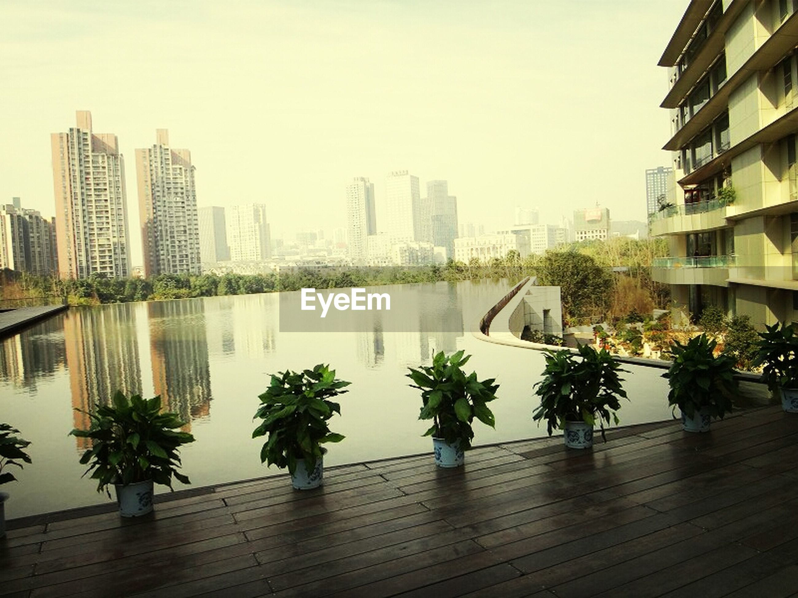 building exterior, architecture, built structure, city, skyscraper, water, tall - high, clear sky, modern, office building, cityscape, tower, tree, reflection, urban skyline, river, railing, growth, sky, palm tree