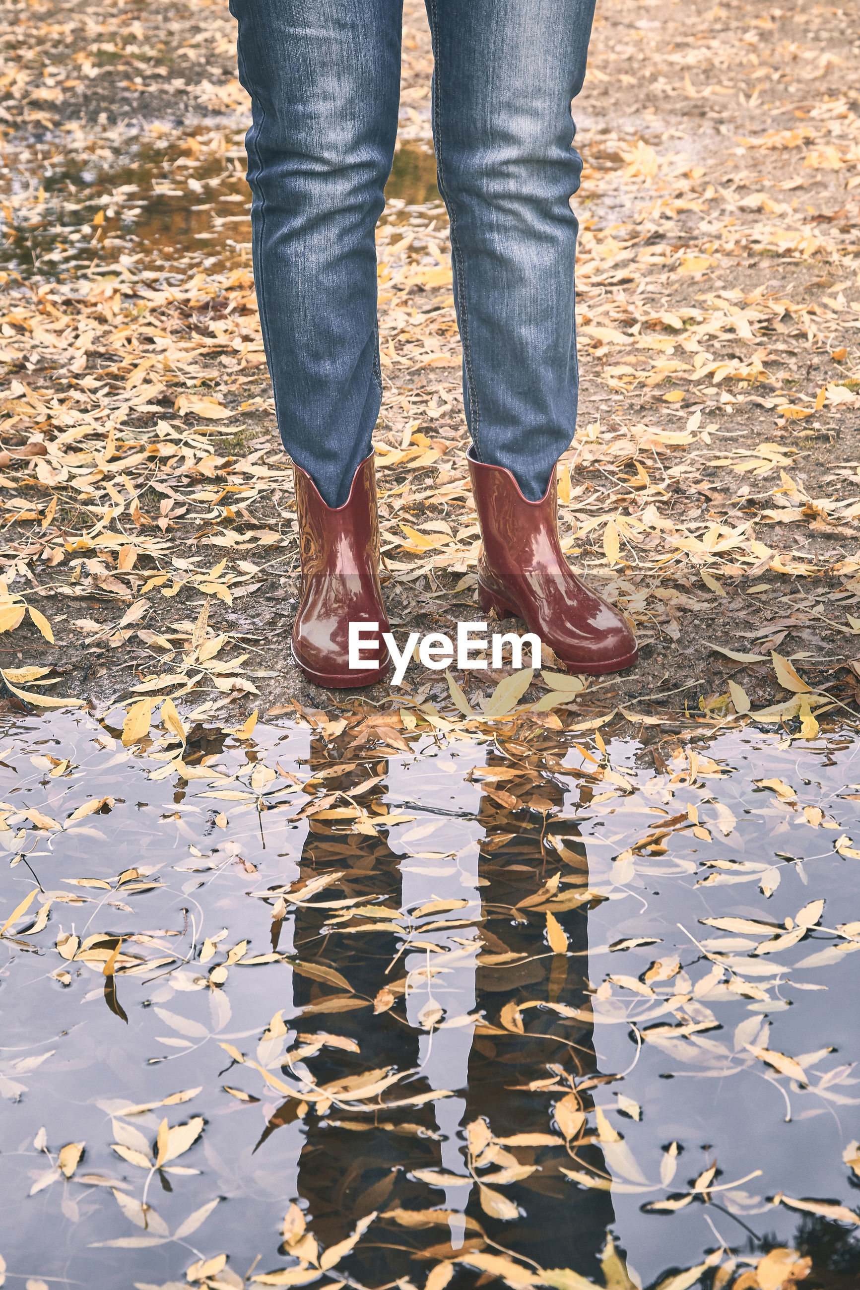 Red rubber boots in front of a puddle with yellow leaf in autumn. rain concept