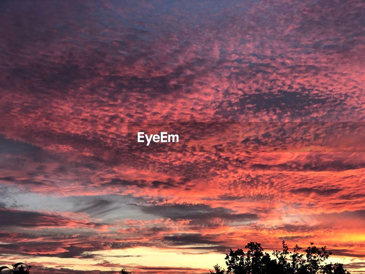 sky, cloud - sky, sunset, beauty in nature, scenics - nature, tree, tranquility, tranquil scene, nature, plant, no people, orange color, idyllic, dramatic sky, silhouette, low angle view, cloudscape, outdoors, non-urban scene, purple, romantic sky