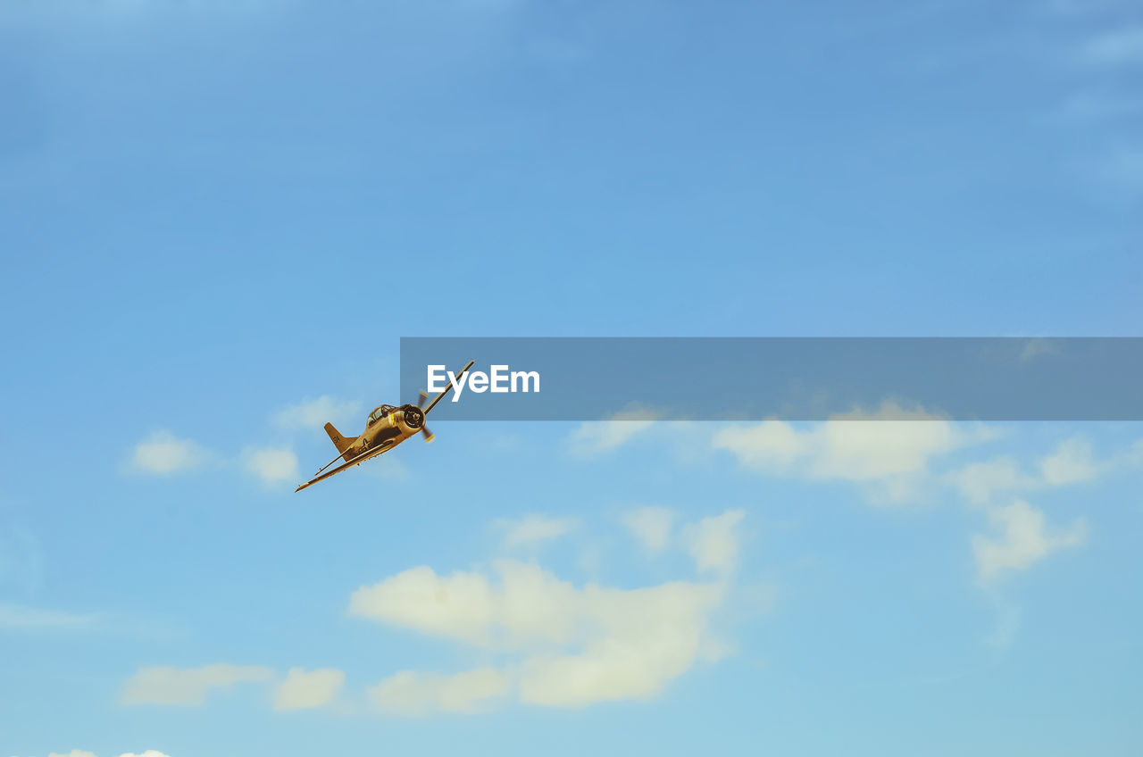 sky, low angle view, cloud - sky, flying, mid-air, no people, blue, air vehicle, nature, day, one animal, copy space, animals in the wild, outdoors, airplane, animal wildlife, motion, mode of transportation, animal themes, animal
