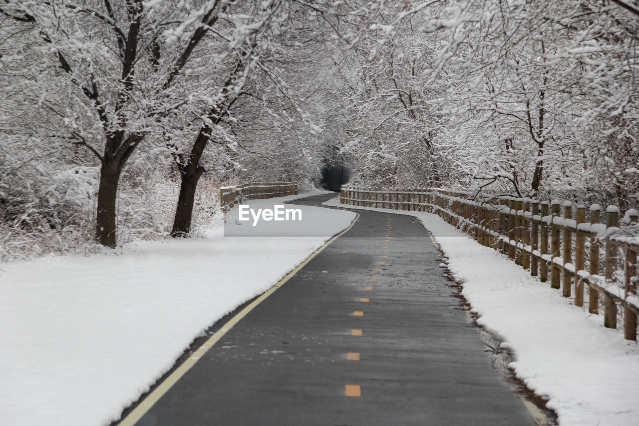 snow, tree, cold temperature, winter, the way forward, direction, plant, diminishing perspective, nature, no people, bridge, bare tree, connection, road, transportation, day, tranquility, covering, bridge - man made structure, footbridge, outdoors, snowing, extreme weather