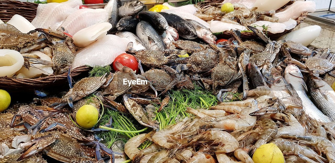 food and drink, food, freshness, seafood, animal, high angle view, wellbeing, healthy eating, no people, vertebrate, still life, choice, fish, large group of objects, raw food, variation, market, vegetable, abundance, close-up