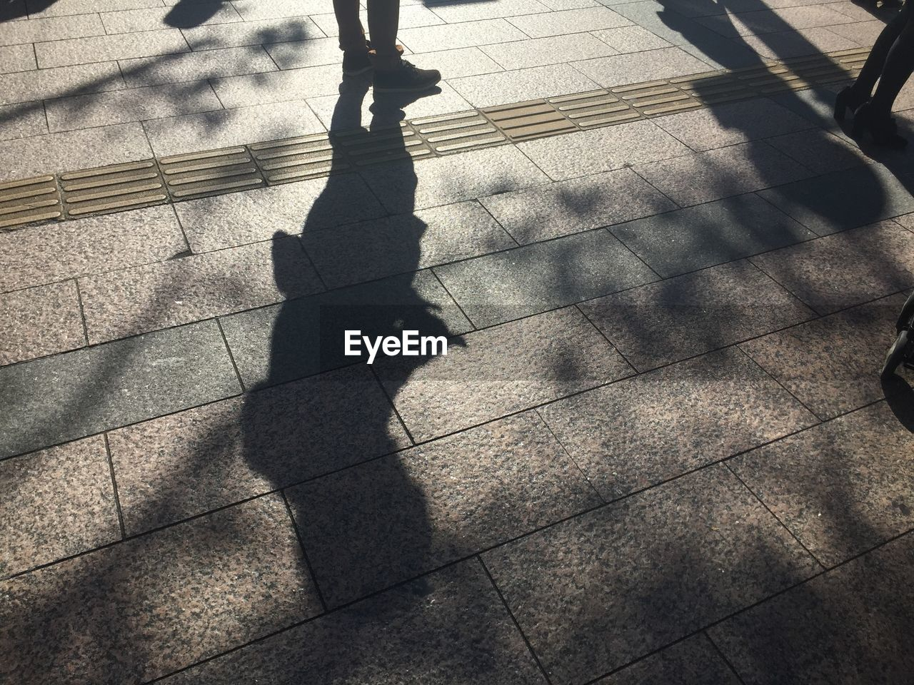 Shadow Of People On Paved Street
