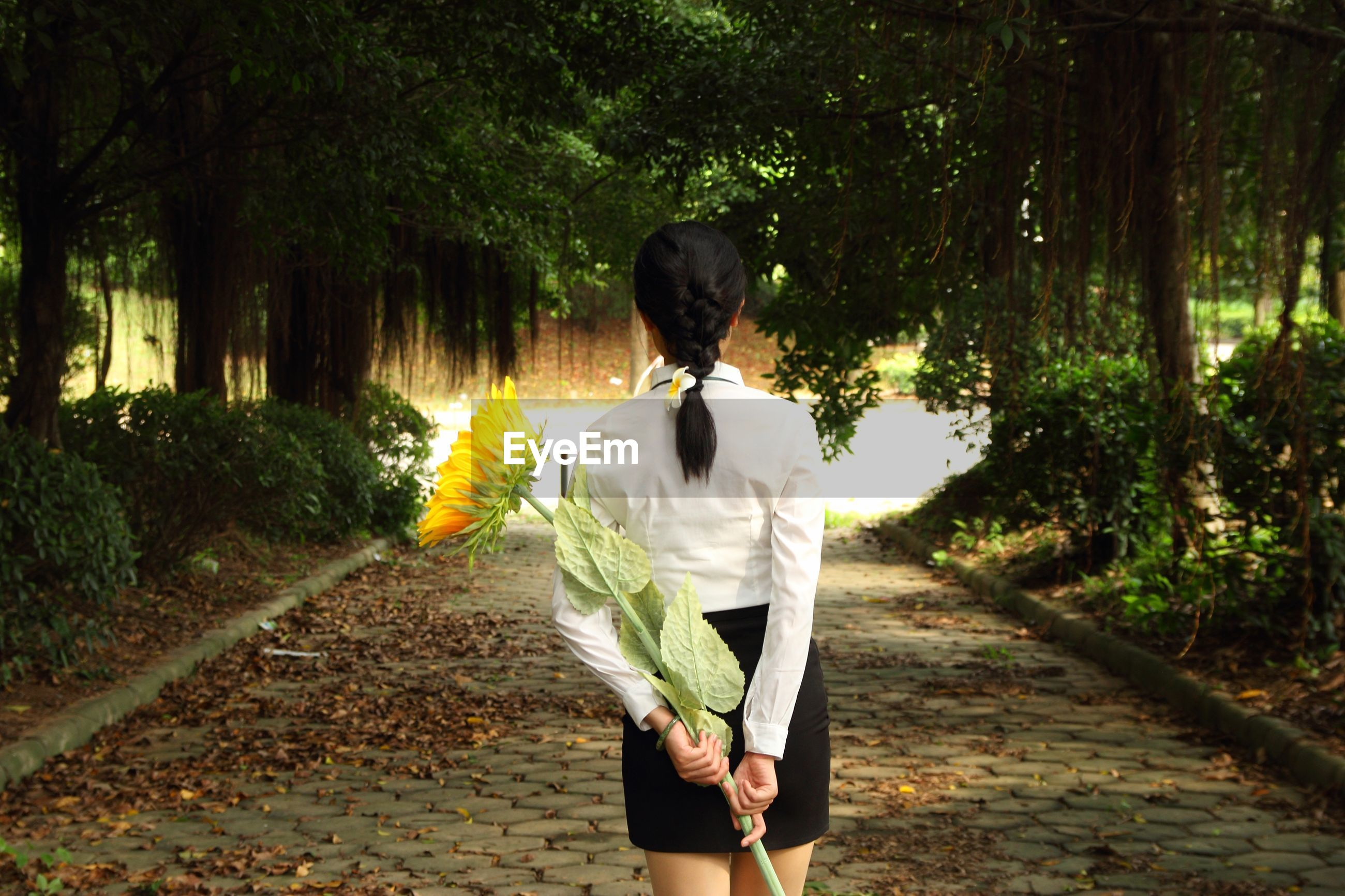 rear view, lifestyles, walking, tree, standing, the way forward, full length, leisure activity, person, casual clothing, street, road, men, footpath, holding, flower, outdoors, day