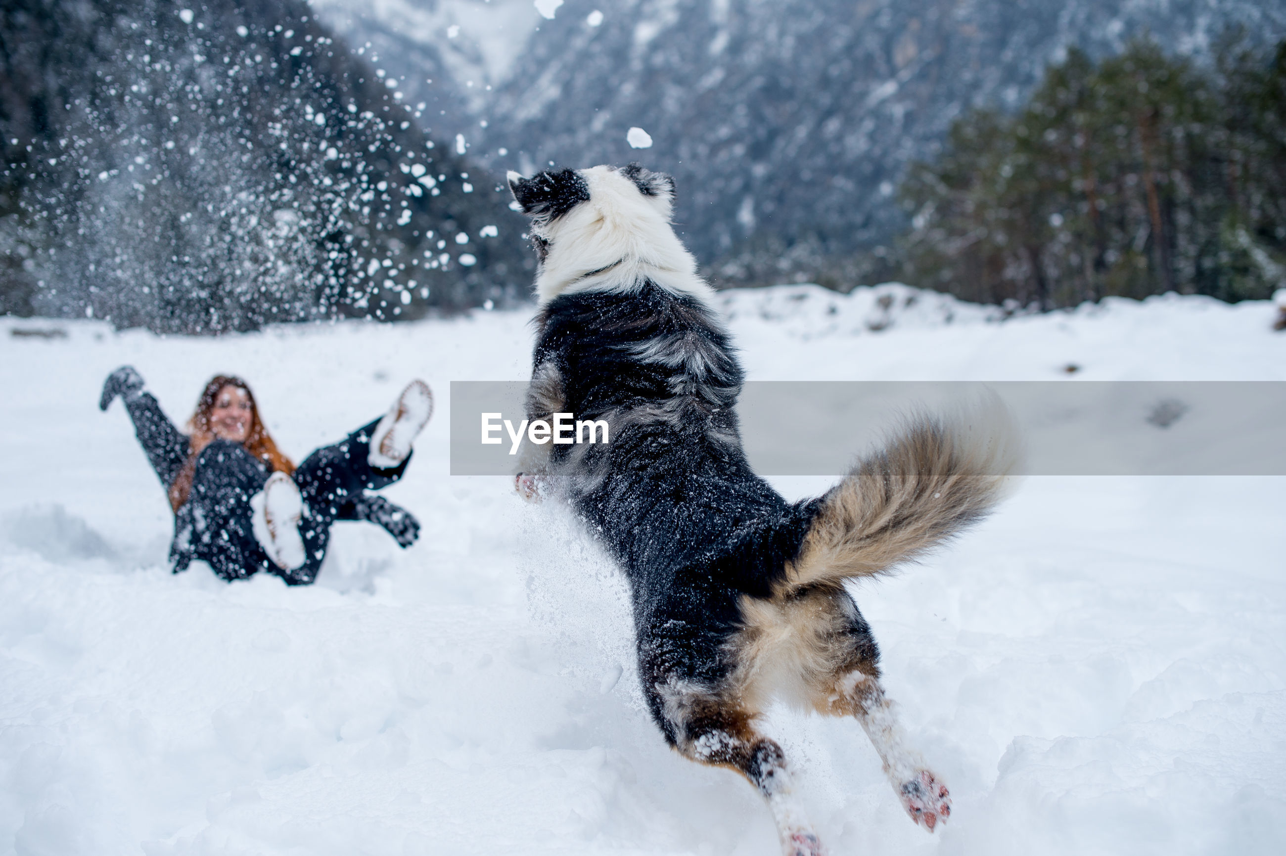 Cheerful woman playing with dog on snow covered field