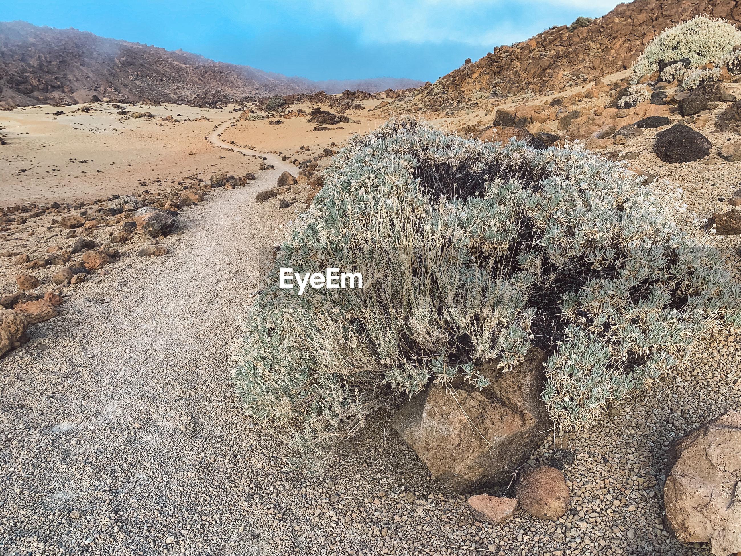VIEW OF DESERT LAND
