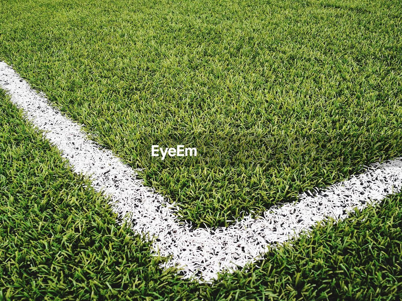green color, grass, plant, high angle view, no people, day, growth, land, field, nature, playing field, sport, outdoors, soccer field, turf, white color, soccer, grass area, full frame, beauty in nature, hedge