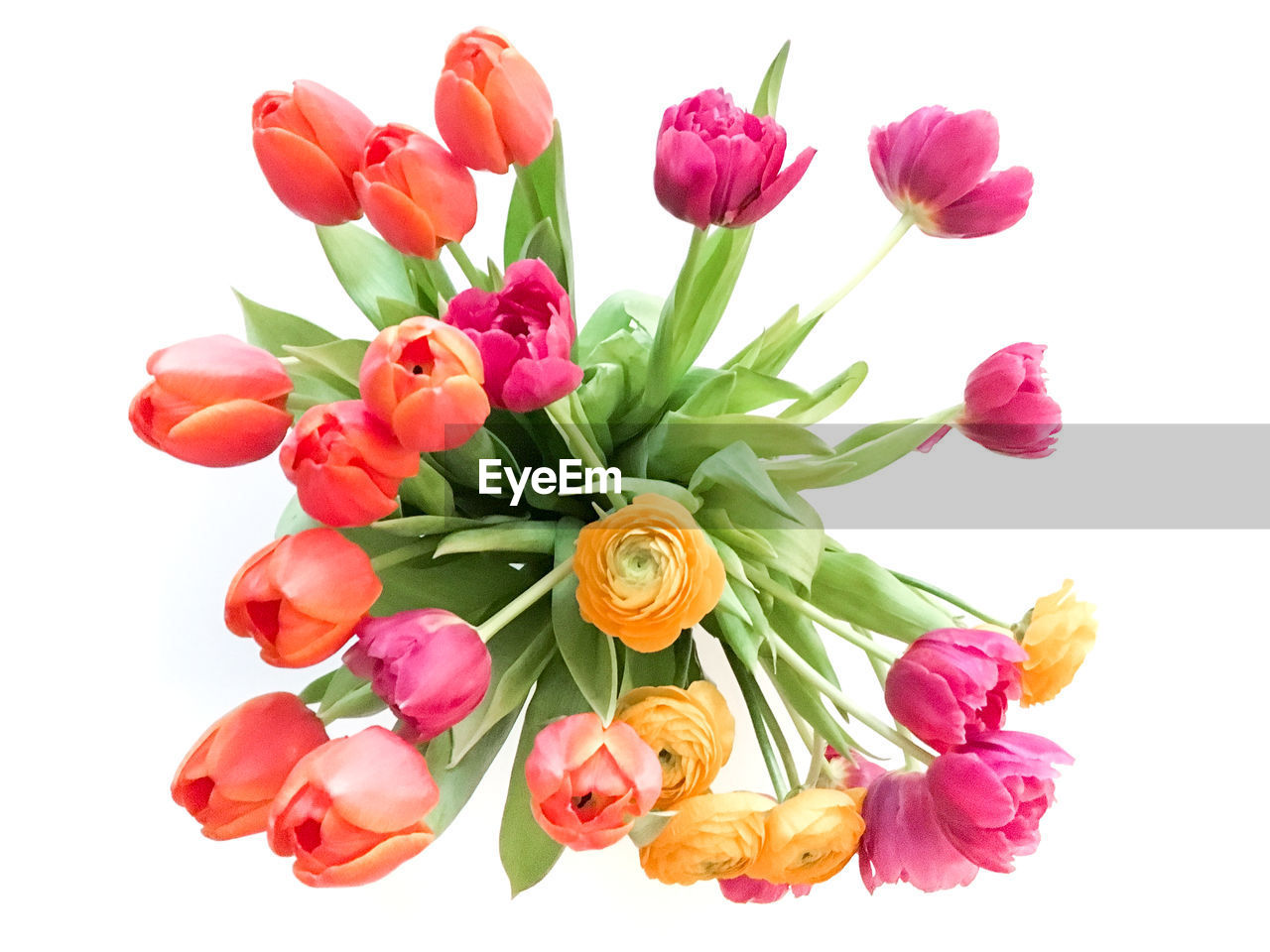 flower, white background, petal, rose - flower, freshness, pink color, fragility, flower head, beauty in nature, tulip, bouquet, studio shot, nature, vase, leaf, springtime, plant, no people, close-up, day