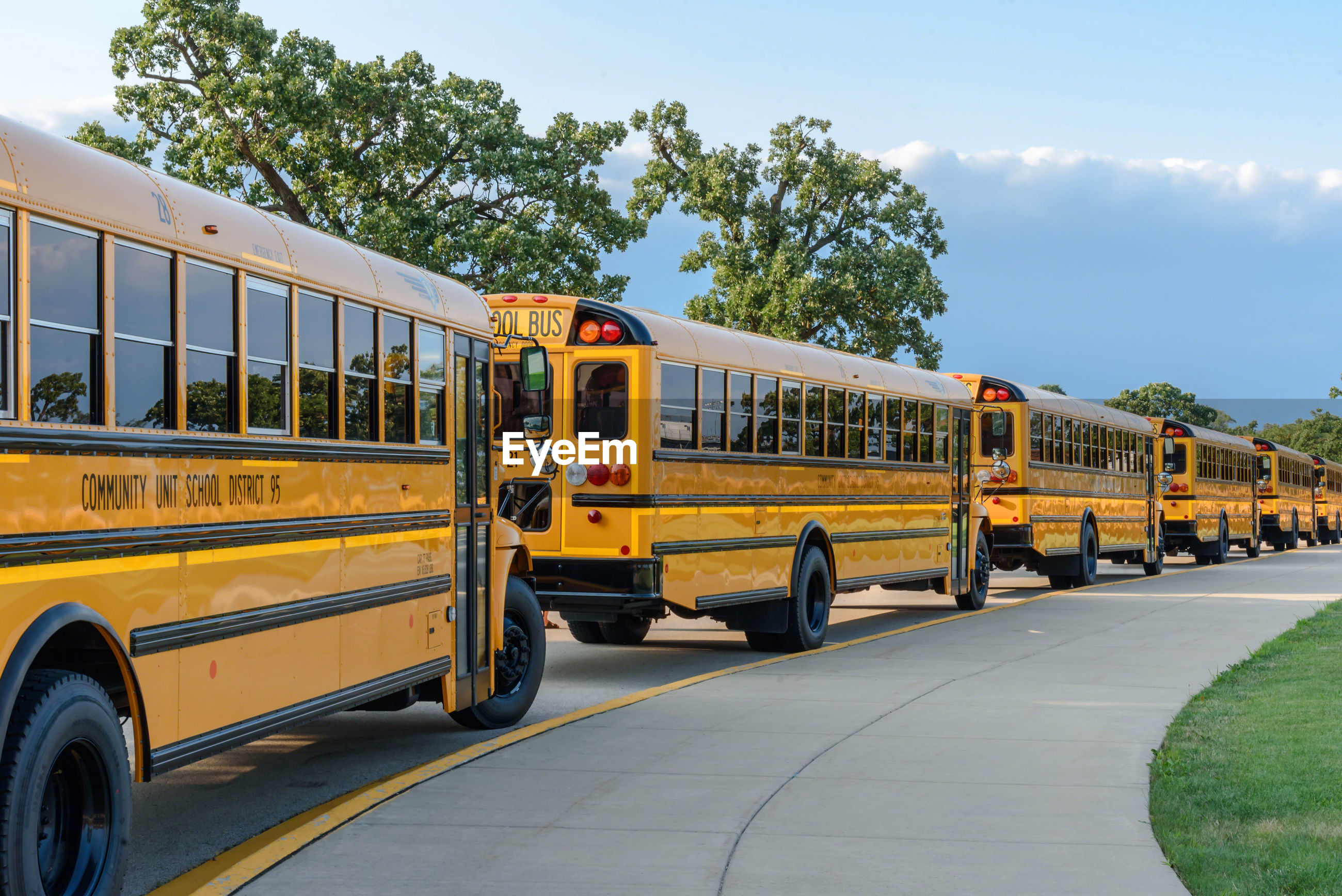 transportation, mode of transport, yellow, land vehicle, school bus, day, public transportation, bus, sky, outdoors, tree, no people