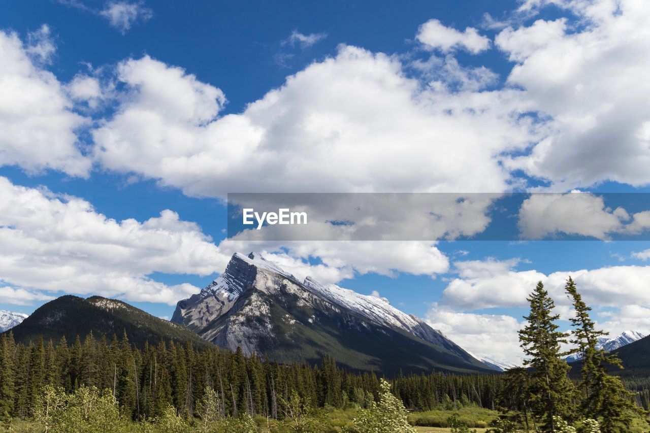 sky, cloud - sky, mountain, beauty in nature, scenics - nature, tree, plant, tranquil scene, tranquility, nature, day, non-urban scene, blue, no people, mountain range, environment, growth, landscape, idyllic, low angle view, outdoors, mountain peak, snowcapped mountain