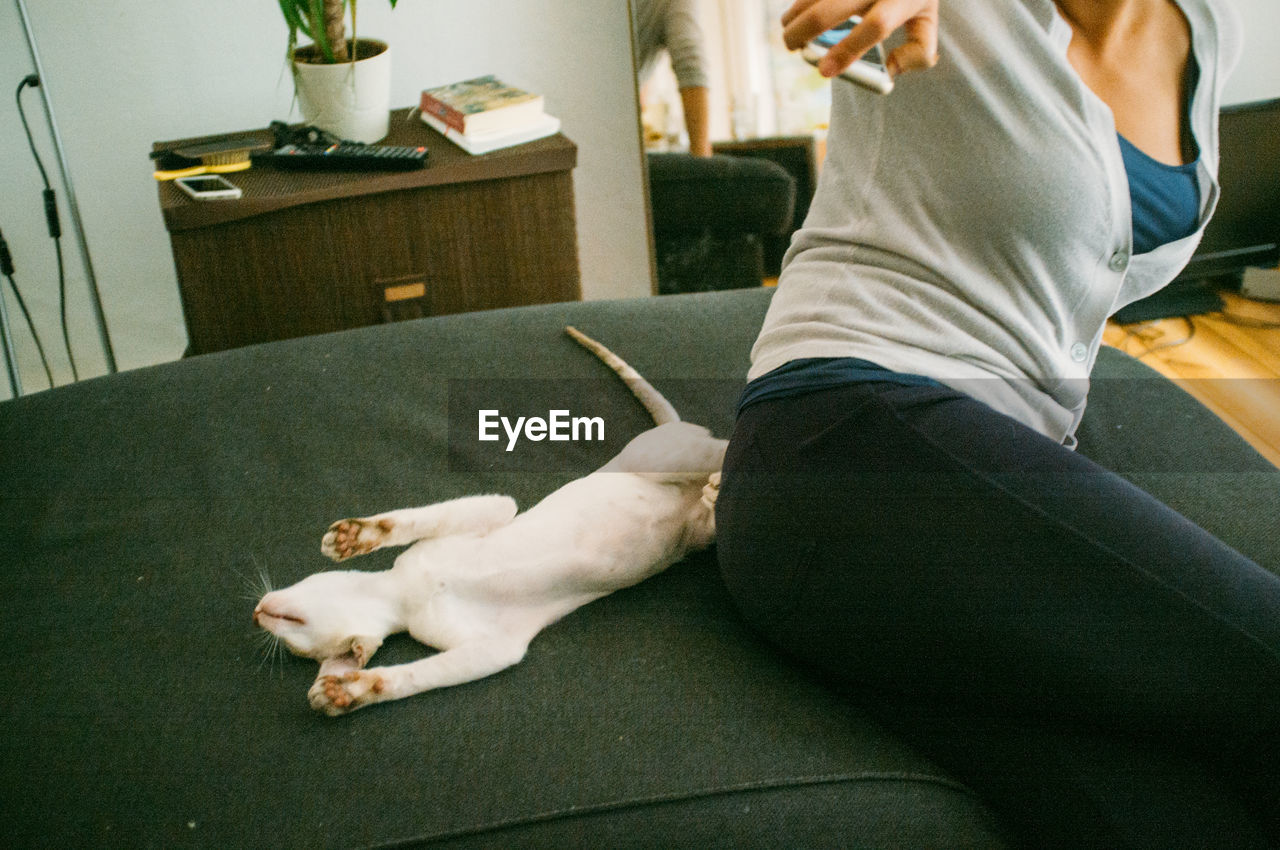 Midsection of woman by cat stretching on bed at home