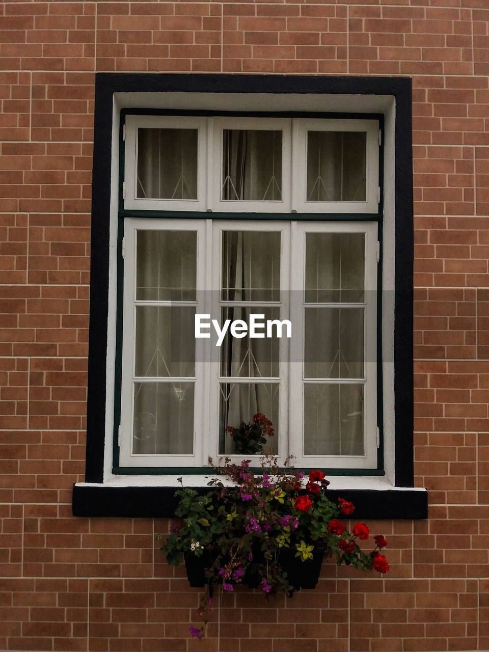 window, building exterior, flower, architecture, brick wall, built structure, house, day, outdoors, no people, fragility, window box, nature