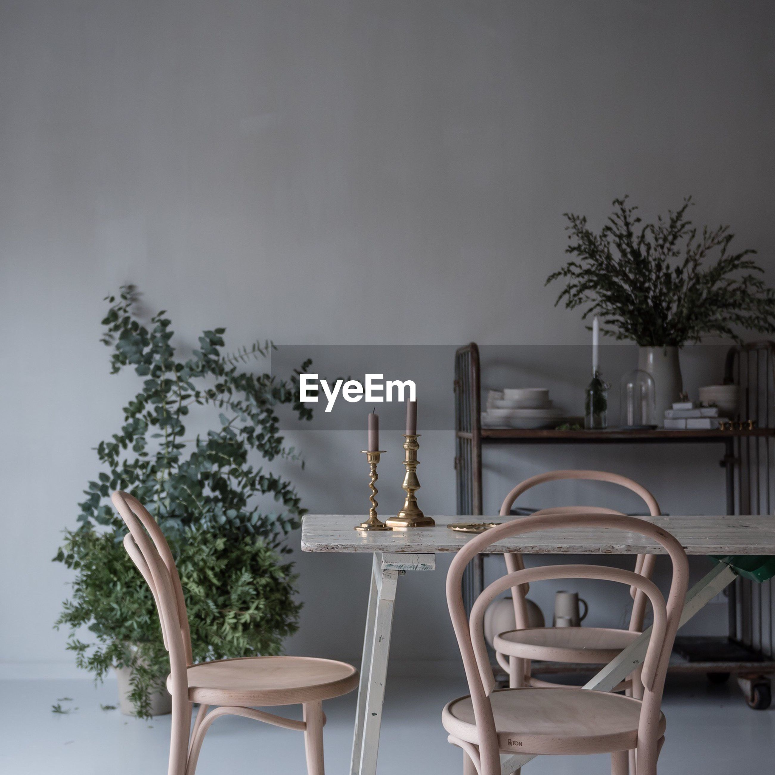 Potted plants by table and chairs