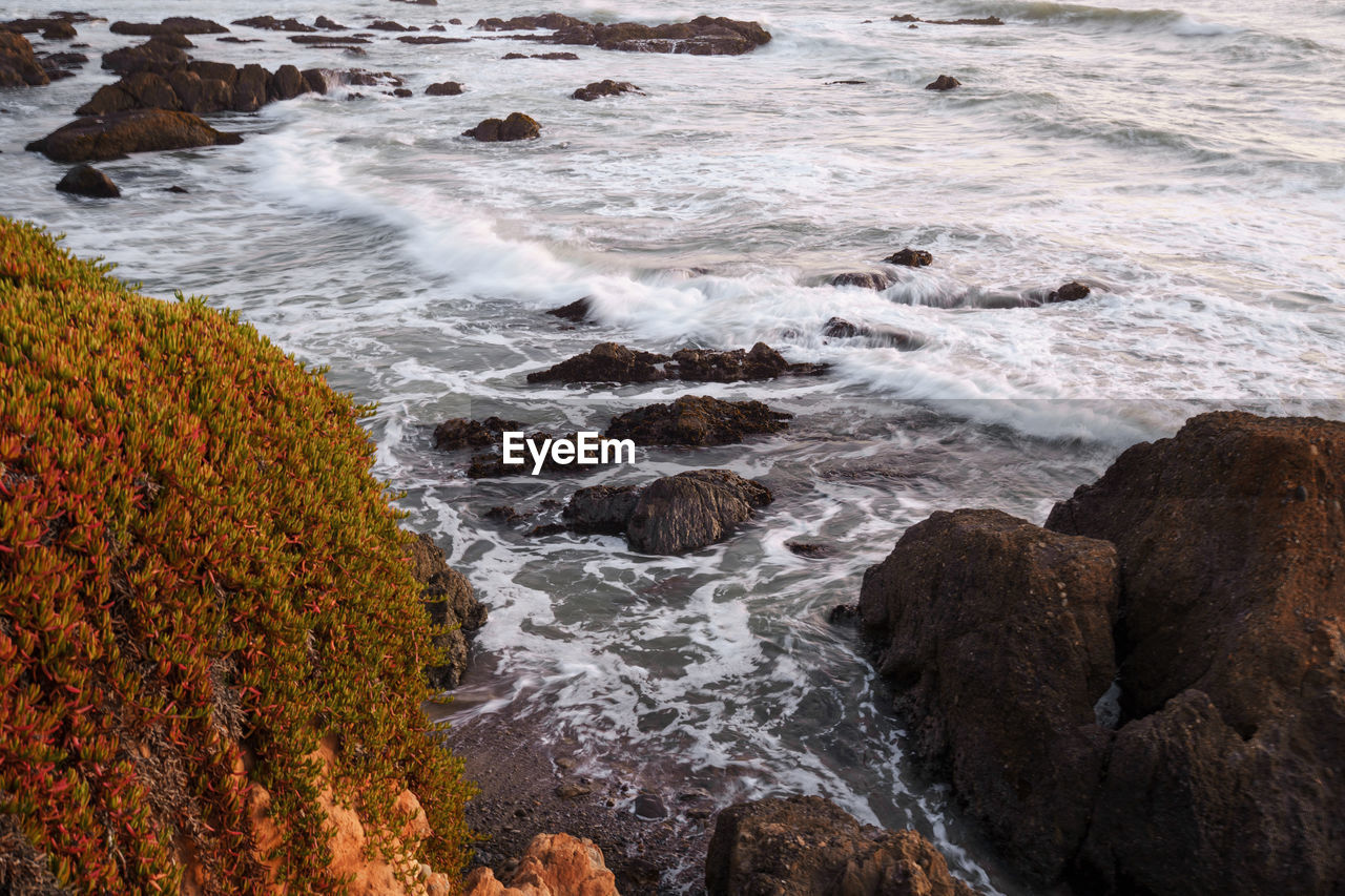SCENIC VIEW OF SEA WAVES
