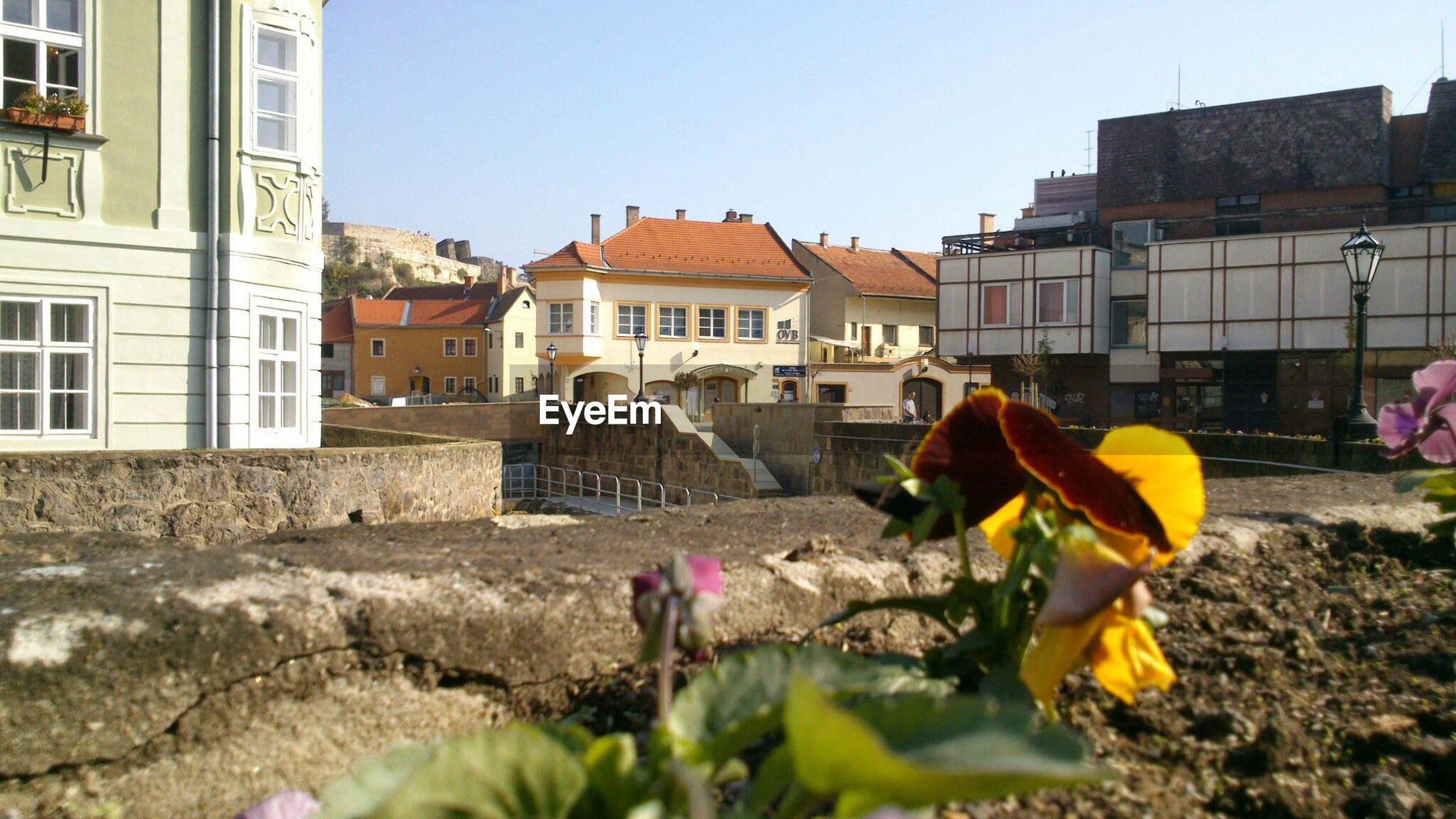 VIEW OF BUILDINGS IN TOWN
