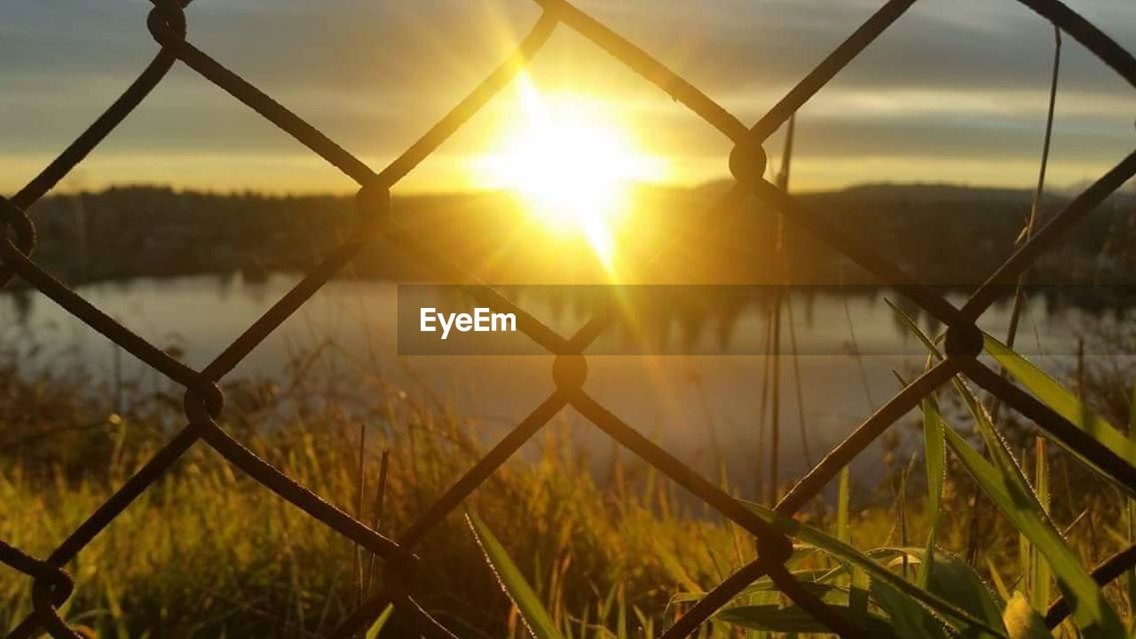 fence, chainlink fence, safety, security, protection, barrier, boundary, sunset, metal, nature, no people, sky, sun, beauty in nature, grass, field, sunlight, focus on foreground, outdoors, lens flare