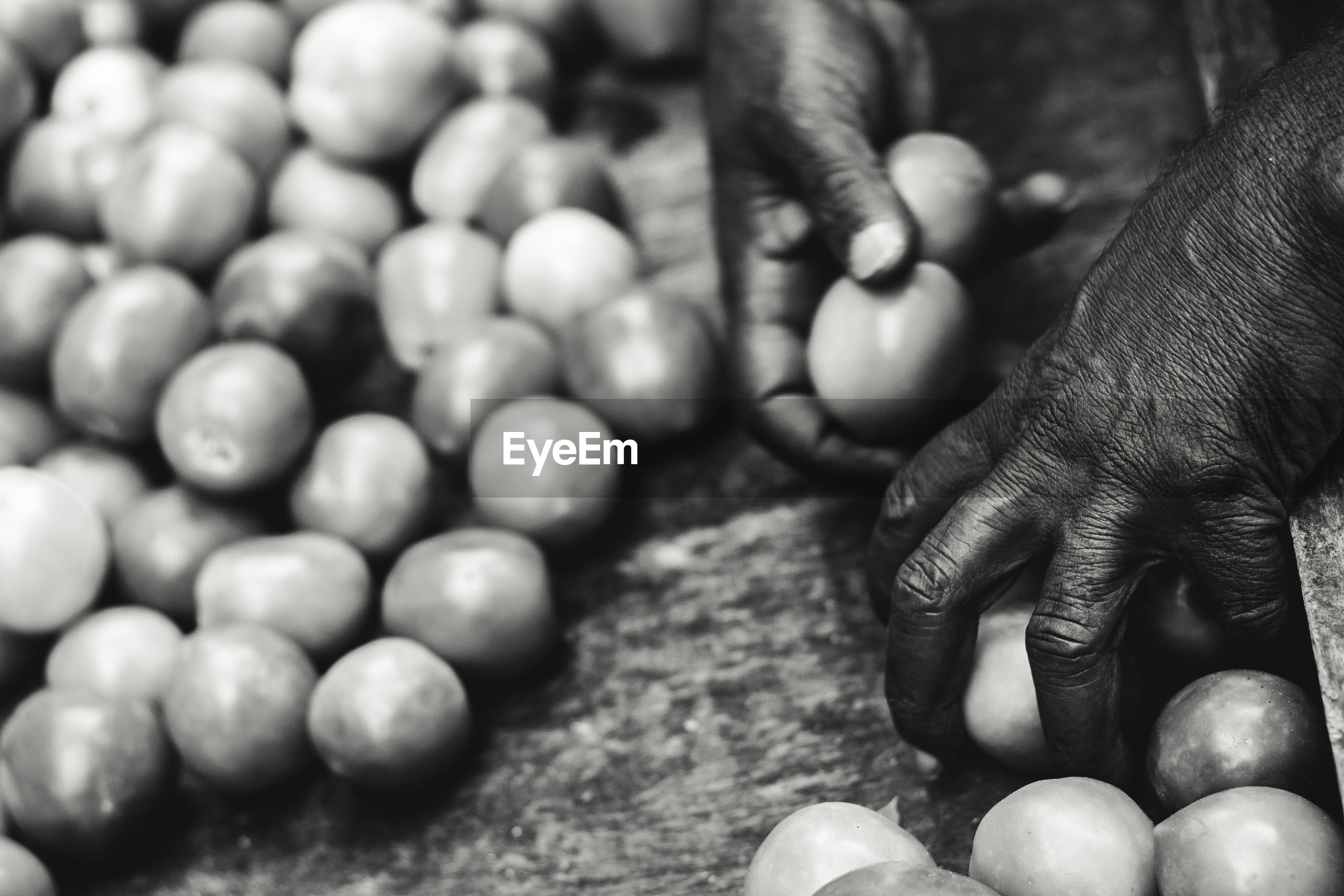 CLOSE-UP OF PERSON HOLDING EGGS IN CONTAINER
