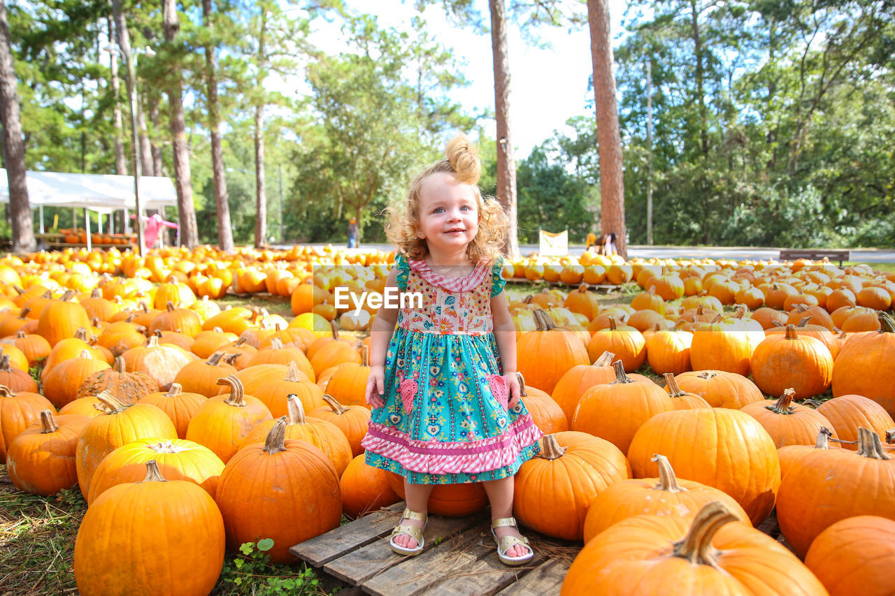 Girl Standing Amidst Pumpkins At Park During Autumn