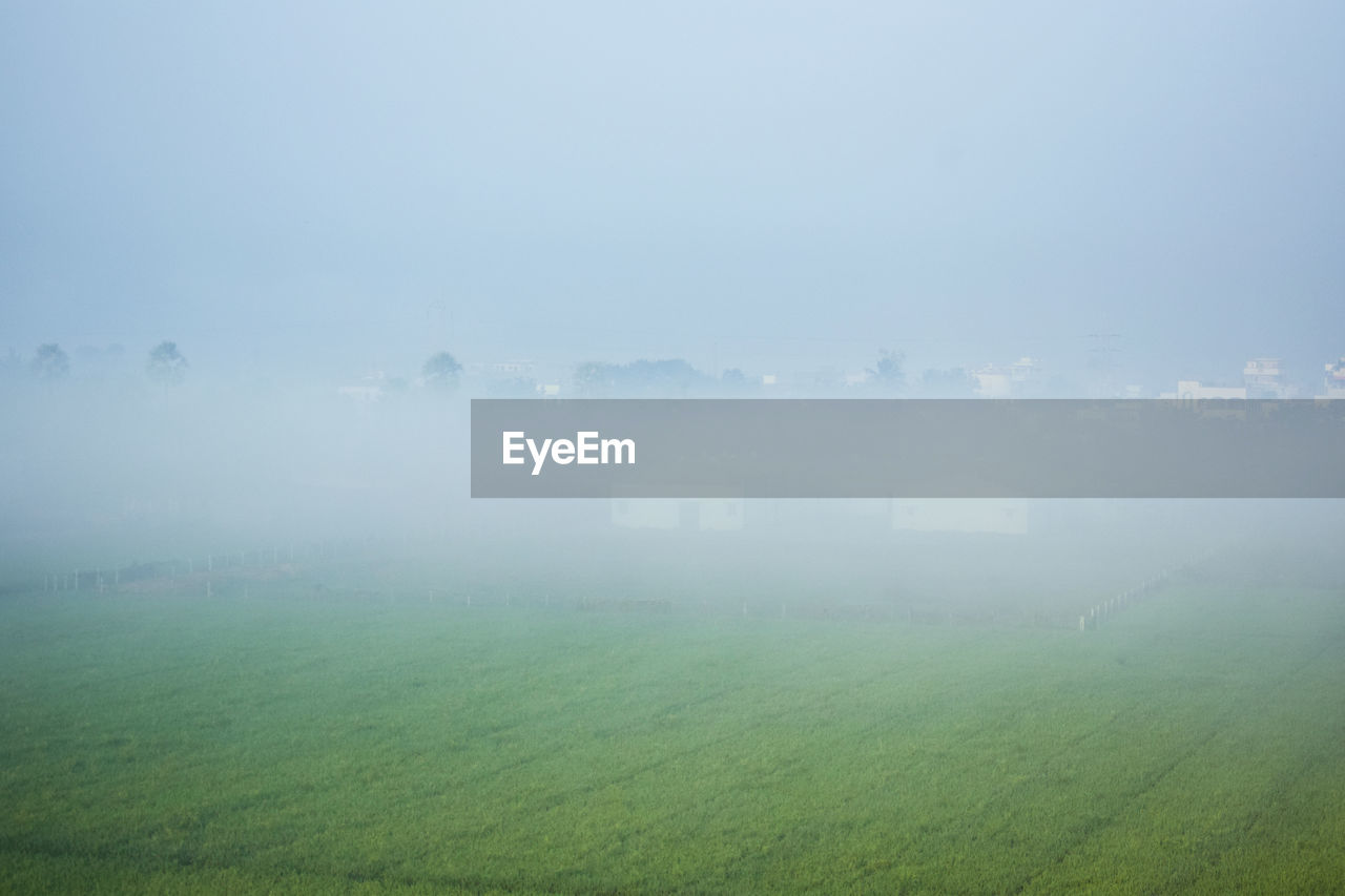 landscape, fog, nature, tranquility, tranquil scene, field, beauty in nature, scenics, idyllic, no people, agriculture, foggy, outdoors, mist, hazy, day, rural scene, grass, sky