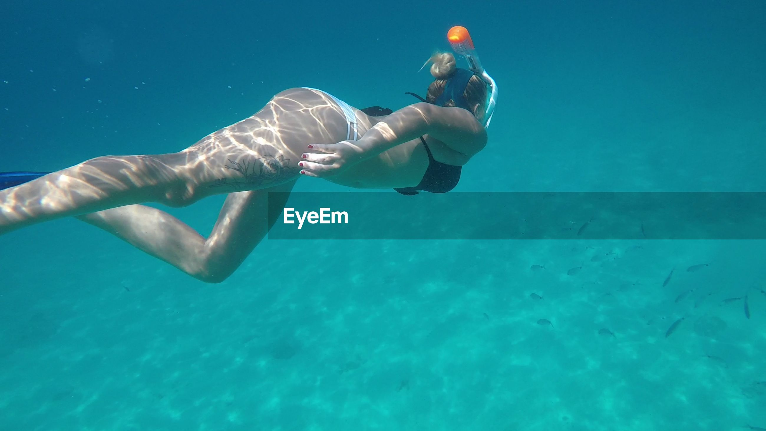Full length of young woman swimming in sea