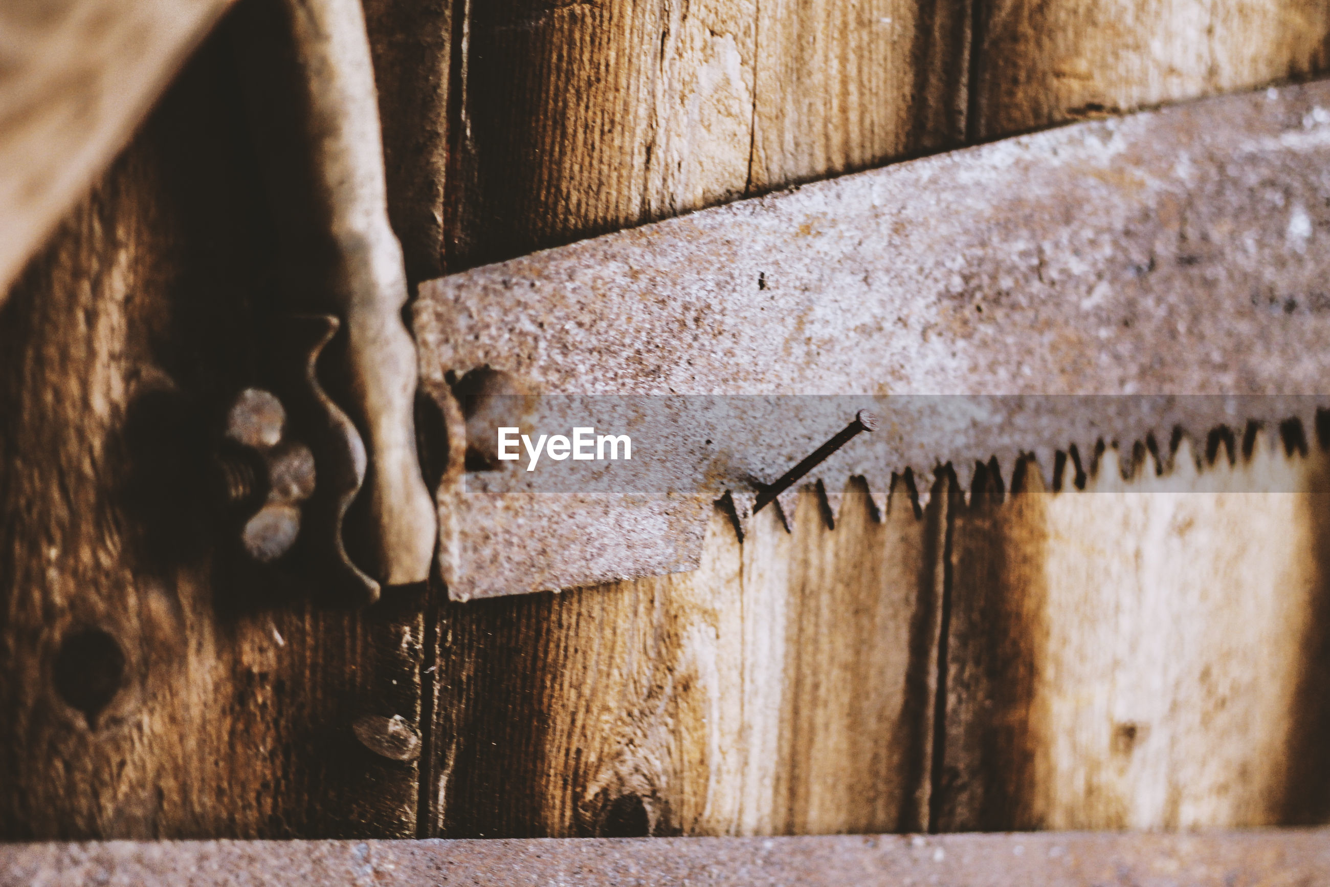 Close-up of rusty hand saw on nail against wooden wall