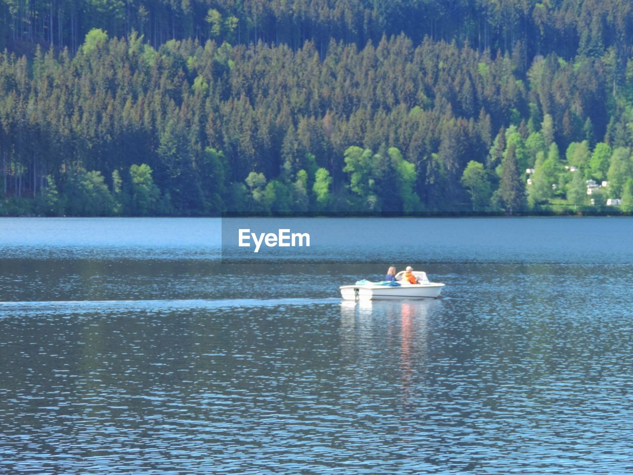 water, nautical vessel, tree, transportation, lake, mode of transportation, plant, waterfront, scenics - nature, day, beauty in nature, real people, nature, two people, men, tranquility, forest, non-urban scene, outdoors, rowboat