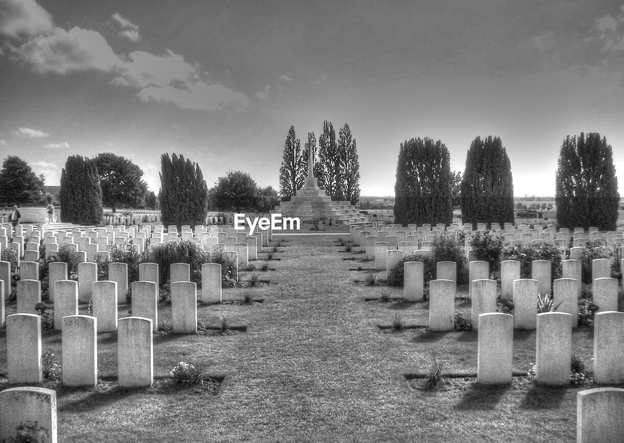 in a row, cemetery, tombstone, memorial, tree, sky, graveyard, outdoors, day, no people, large group of objects, nature, gravestone, military
