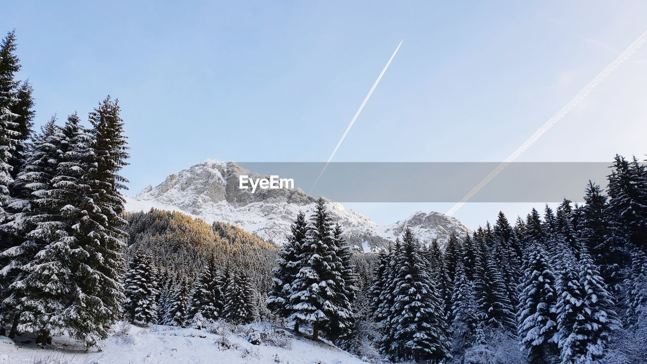 snow, winter, cold temperature, tree, plant, beauty in nature, scenics - nature, sky, tranquil scene, tranquility, no people, nature, non-urban scene, land, day, environment, mountain, cloud - sky, vapor trail, coniferous tree, snowcapped mountain, pine tree
