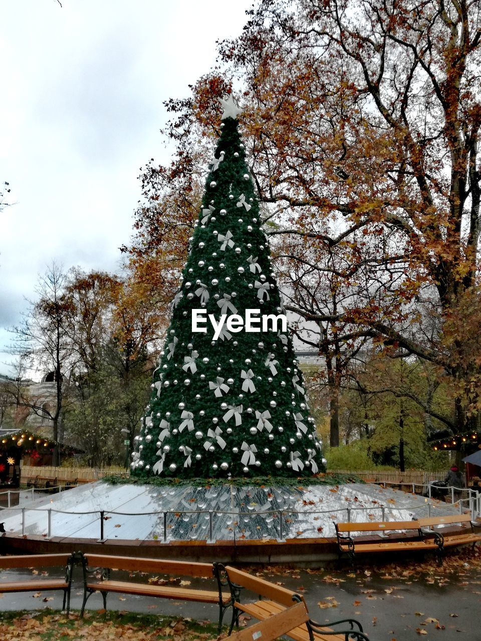 tree, plant, nature, day, christmas tree, growth, sky, outdoors, architecture, christmas, winter, holiday, no people, park, celebration, snow, decoration, park - man made space, change