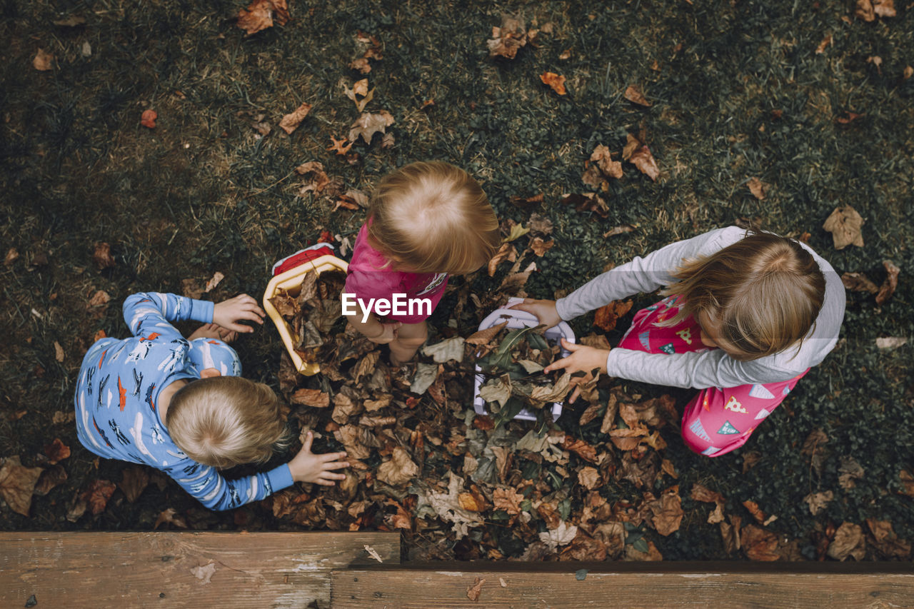 High Angle View Of Siblings Playing With Autumn Leaves