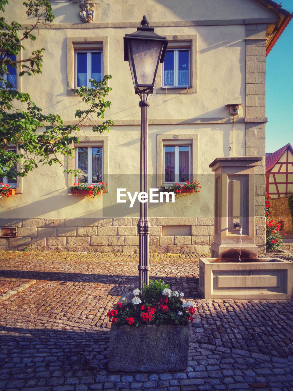 architecture, building exterior, built structure, building, window, flower, flowering plant, plant, residential district, nature, potted plant, no people, house, street, outdoors, lighting equipment, city, day, footpath, sidewalk, flower pot, flower arrangement, electric lamp, bouquet, houseplant