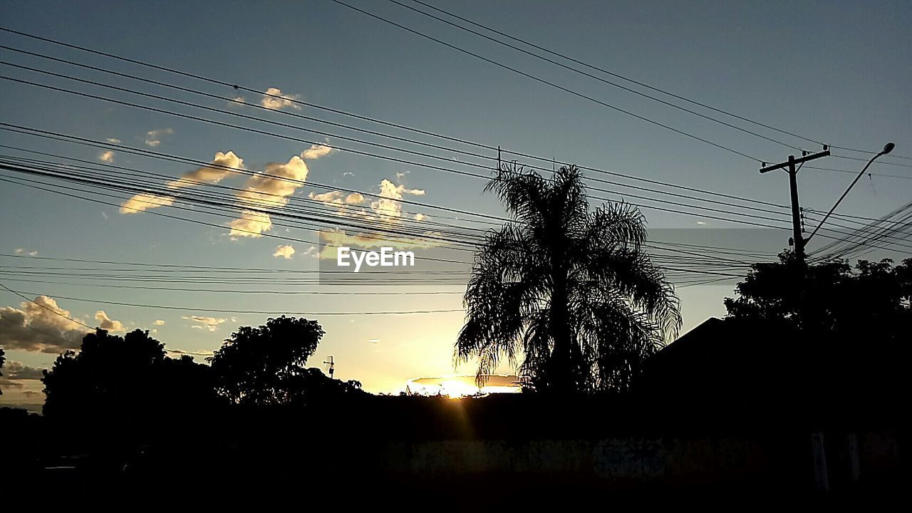 cable, power line, electricity, power supply, silhouette, electricity pylon, sunset, connection, sky, tree, low angle view, no people, fuel and power generation, technology, sun, nature, outdoors, telephone line, clear sky, beauty in nature, day