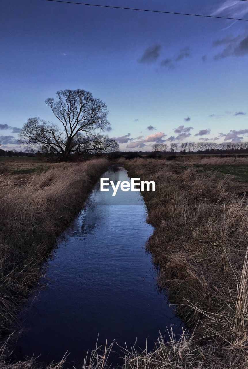 tranquil scene, bare tree, nature, tranquility, beauty in nature, tree, sky, scenics, reflection, no people, water, outdoors, field, grass, landscape, river, day, cloud - sky, growth, blue