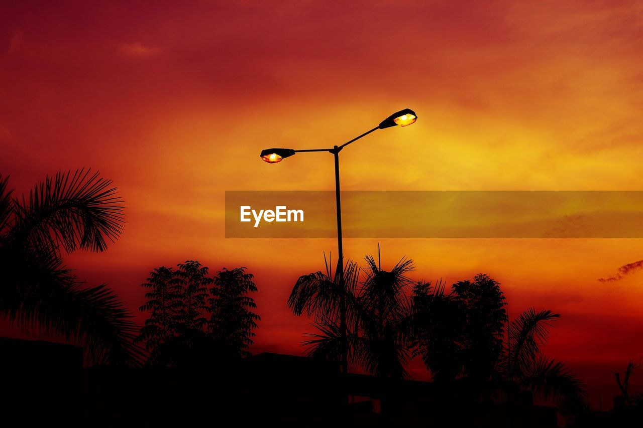 sunset, sky, silhouette, plant, tree, orange color, street light, street, nature, beauty in nature, tropical climate, palm tree, low angle view, scenics - nature, lighting equipment, no people, cloud - sky, tranquility, outdoors, growth, romantic sky, palm leaf