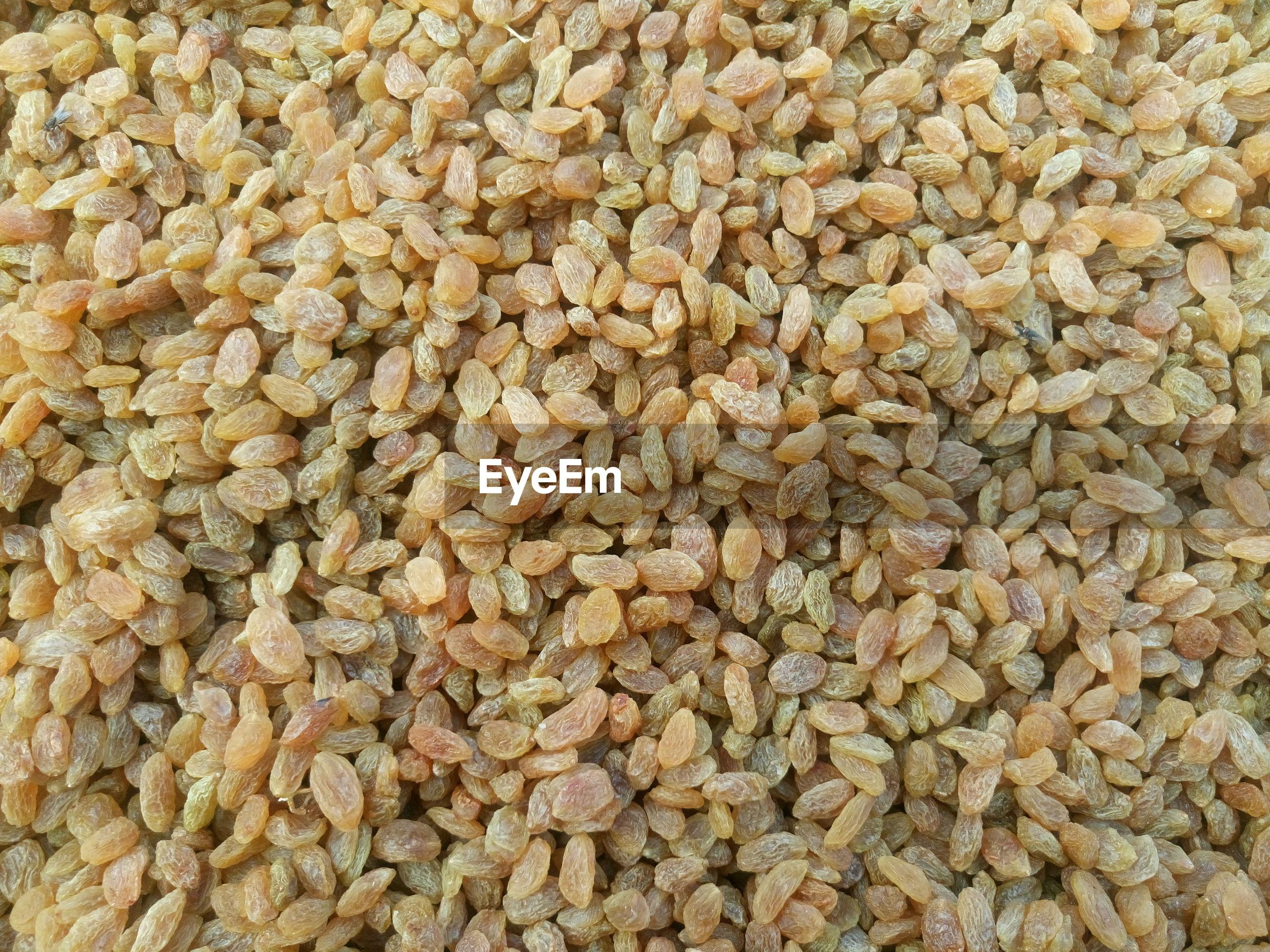Full frame image of raisin at market