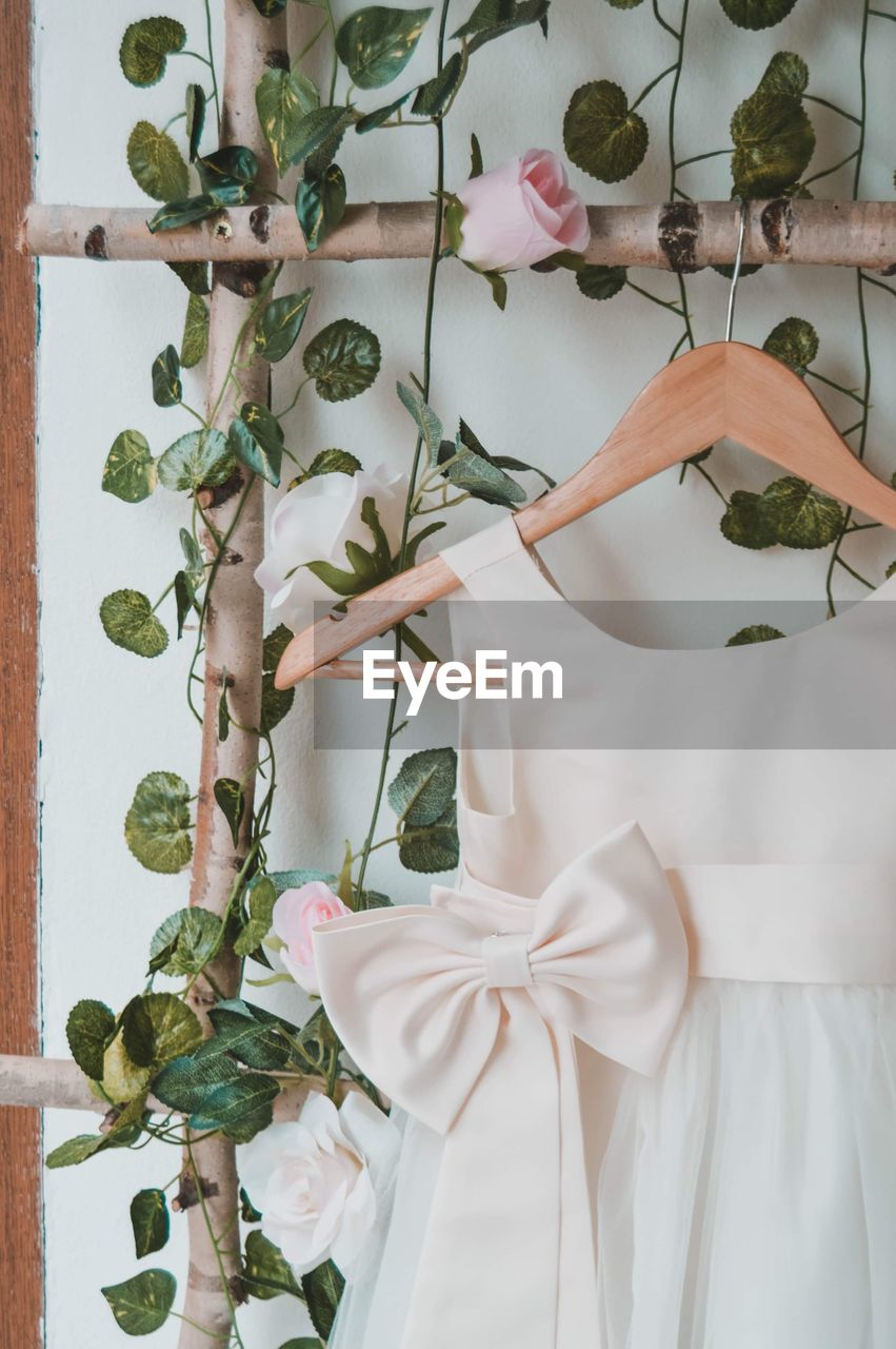 plant, flower, flowering plant, indoors, nature, growth, no people, beauty in nature, white color, plant part, leaf, decoration, fashion, dress, freshness, close-up, clothing, day, green color, flower head, flower arrangement