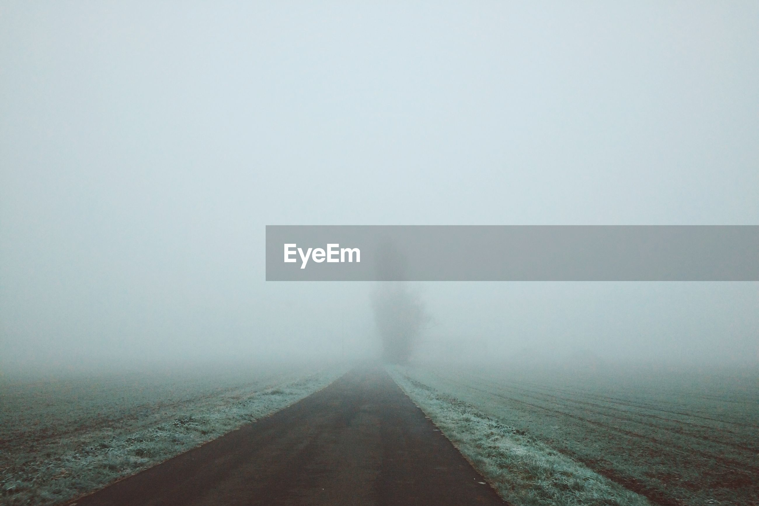 VIEW OF ROAD IN FOGGY WEATHER