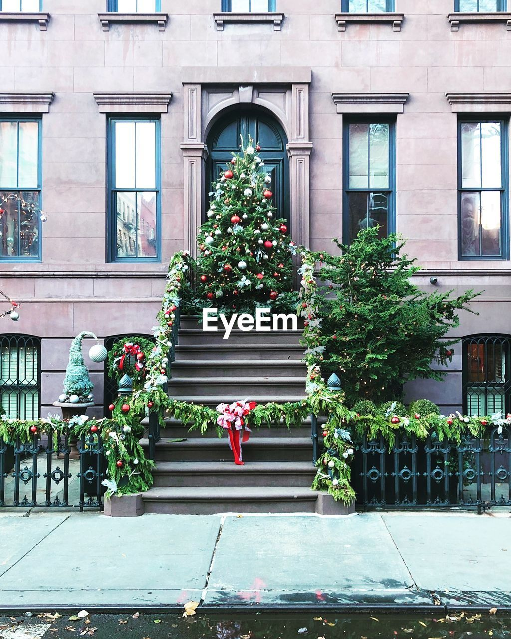 building exterior, architecture, built structure, christmas, plant, decoration, tree, window, celebration, building, christmas tree, nature, day, christmas decoration, holiday, outdoors, no people, potted plant, event, christmas ornament