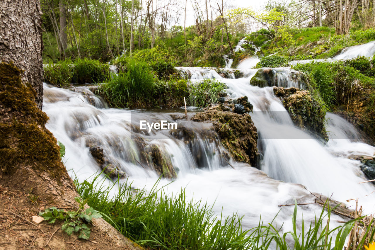 plant, tree, beauty in nature, long exposure, water, scenics - nature, motion, forest, flowing water, blurred motion, waterfall, rock, land, nature, solid, no people, day, rock - object, environment, flowing, outdoors, stream - flowing water, power in nature, rainforest, falling water