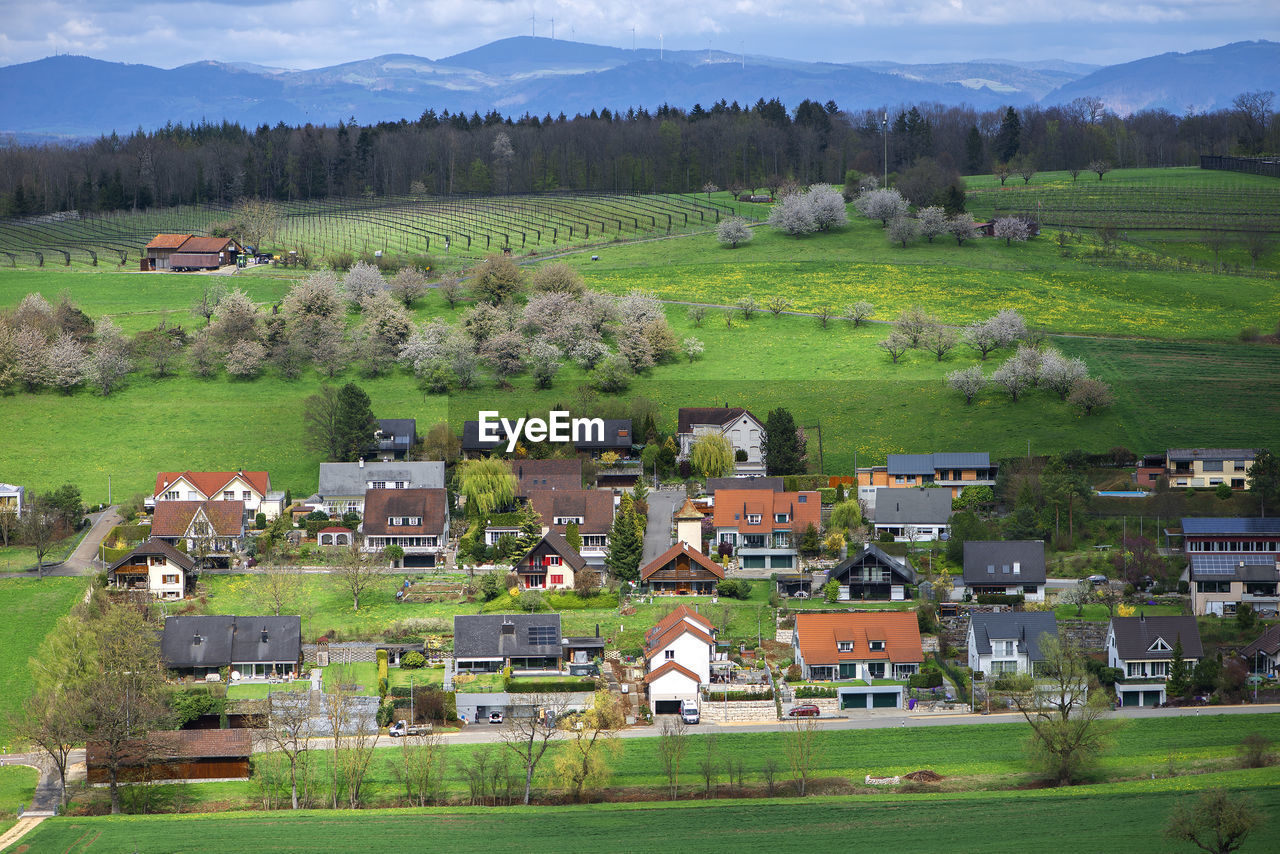 Scenic view of agricultural field by houses and trees