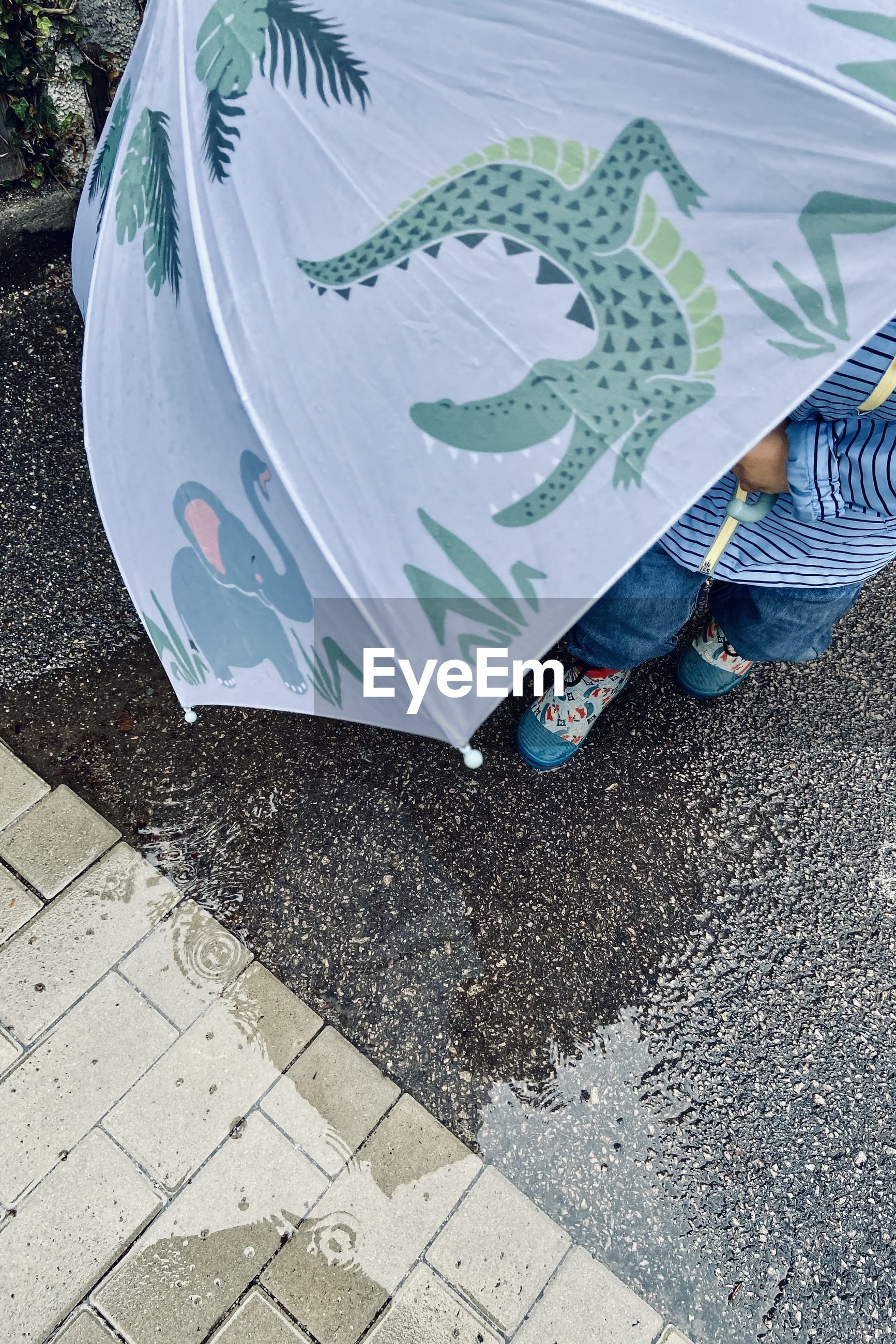 LOW SECTION OF PERSON HOLDING UMBRELLA ON FOOTPATH