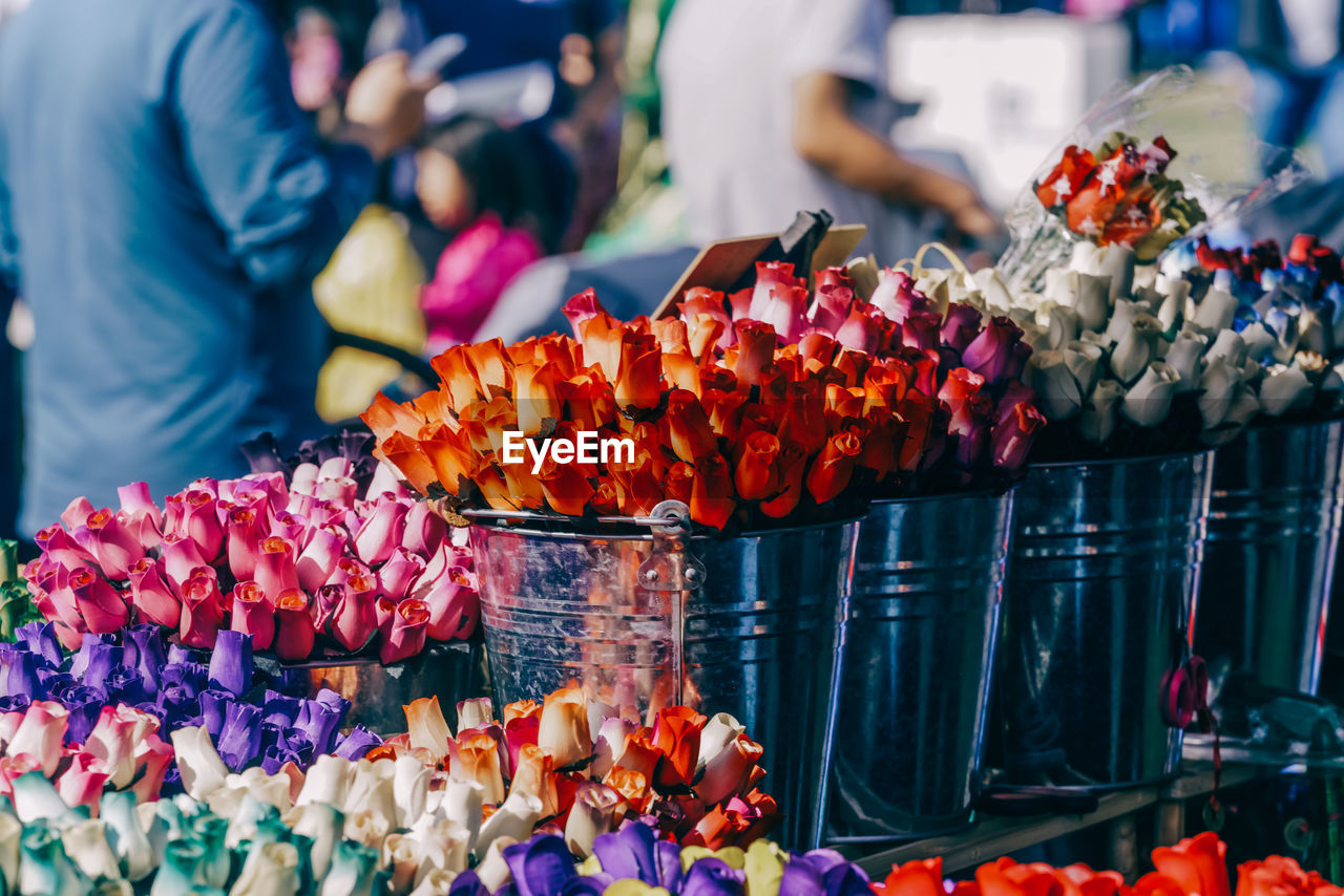 Close-up of flowers for sale in market