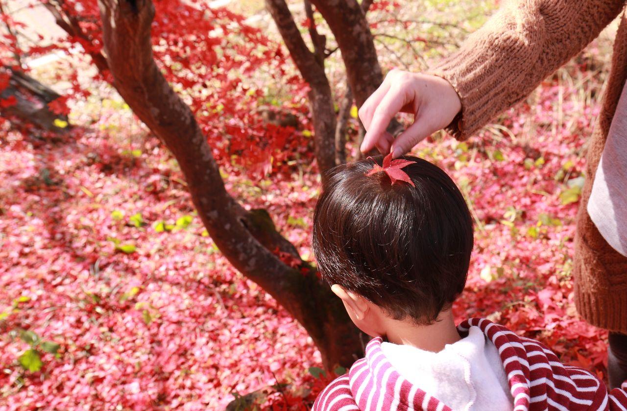 Leaf On Head Of Child