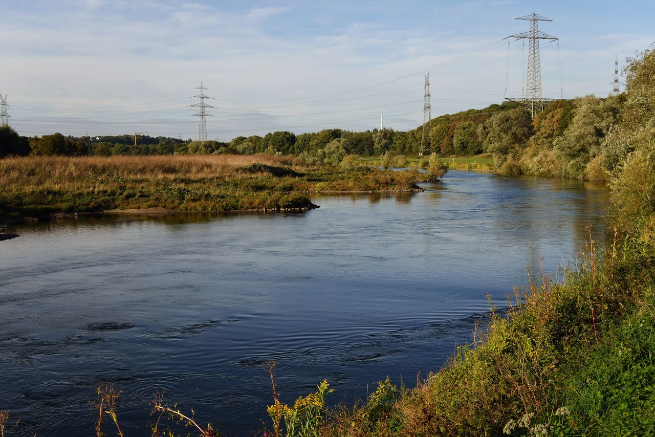 water, plant, sky, nature, tranquility, tranquil scene, scenics - nature, electricity pylon, beauty in nature, tree, river, cloud - sky, electricity, no people, reflection, growth, connection, technology, outdoors, power supply