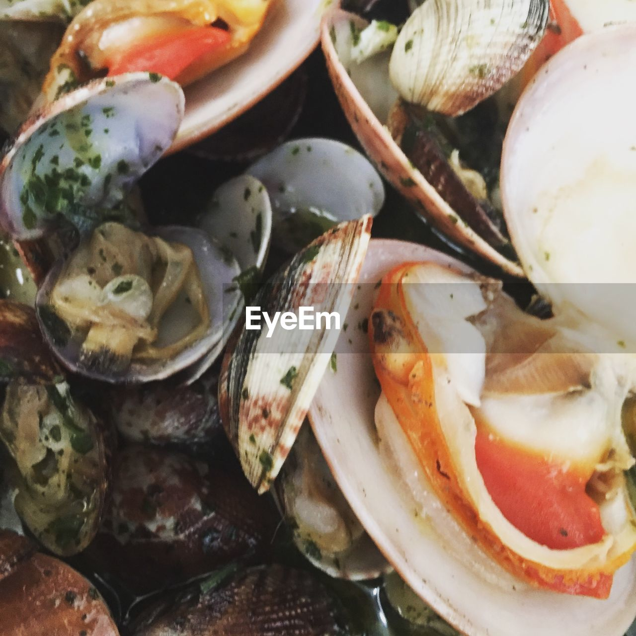 food, food and drink, healthy eating, wellbeing, freshness, seafood, close-up, vegetable, fruit, still life, no people, indoors, ready-to-eat, tomato, crustacean, shell, full frame, mussel, animal shell, animal, herb