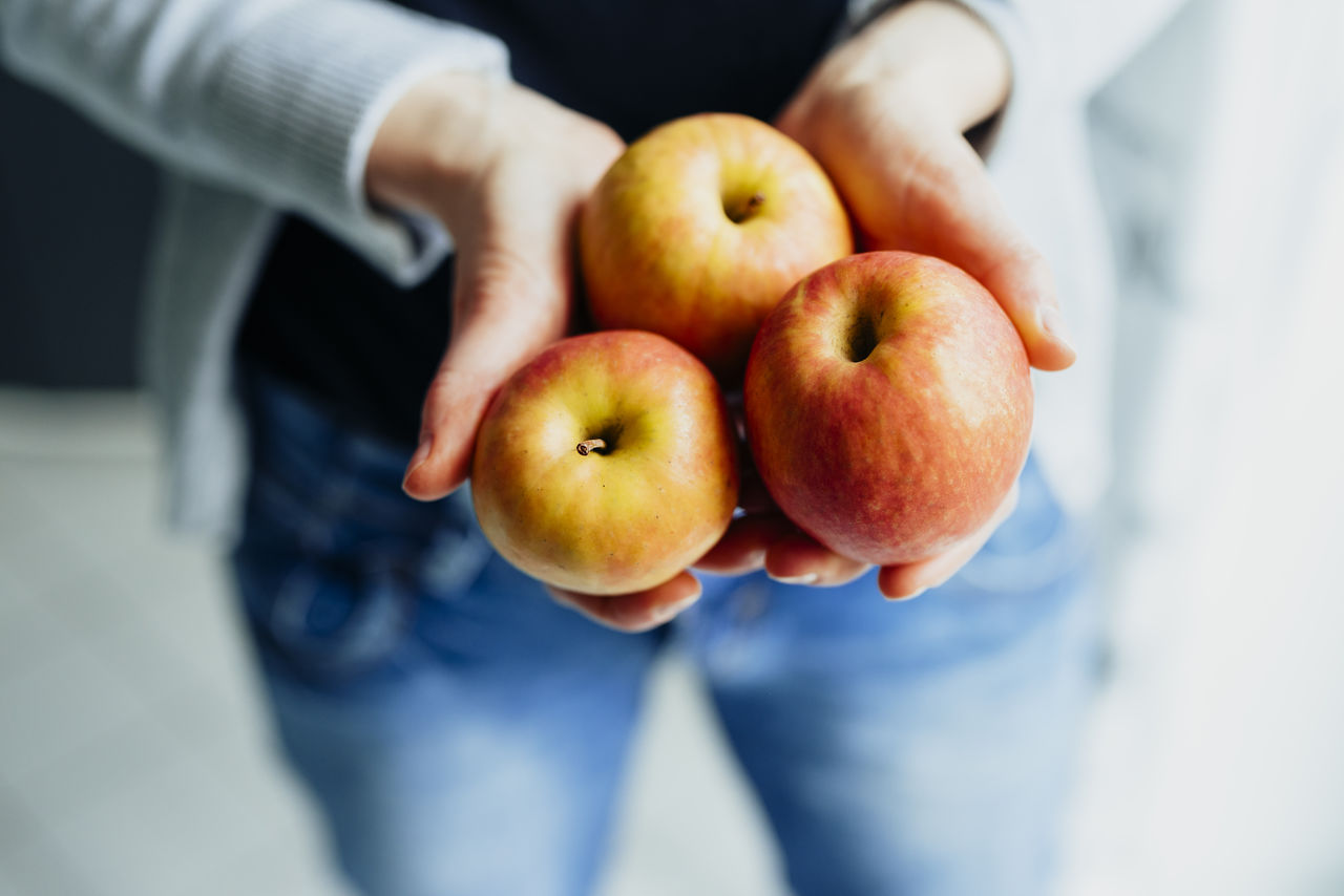 fruit, healthy eating, apple - fruit, food and drink, food, human hand, one person, freshness, wellbeing, hand, midsection, holding, human body part, real people, men, high angle view, close-up, lifestyles, day, human limb