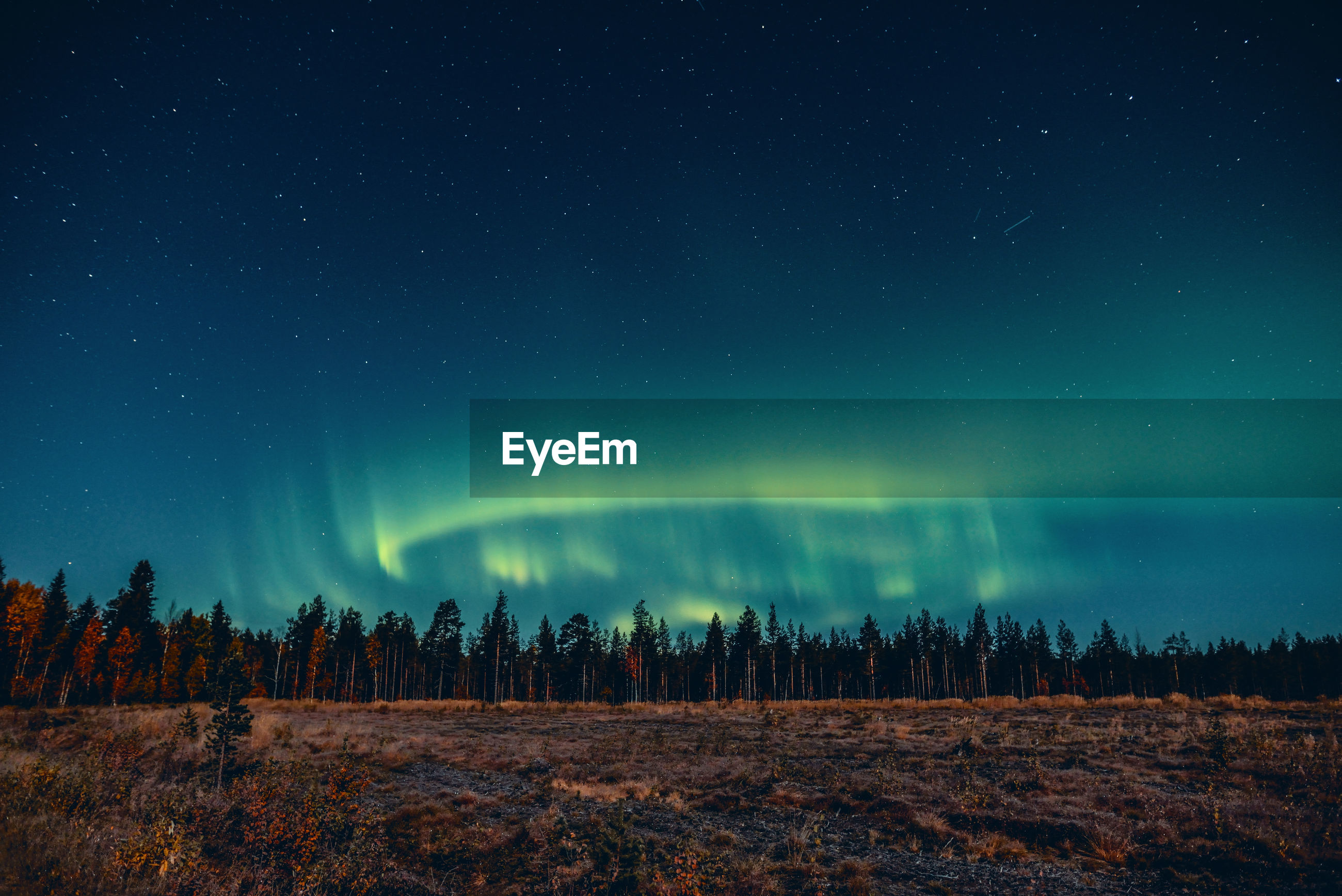 Panoramic view of landscape against sky at night