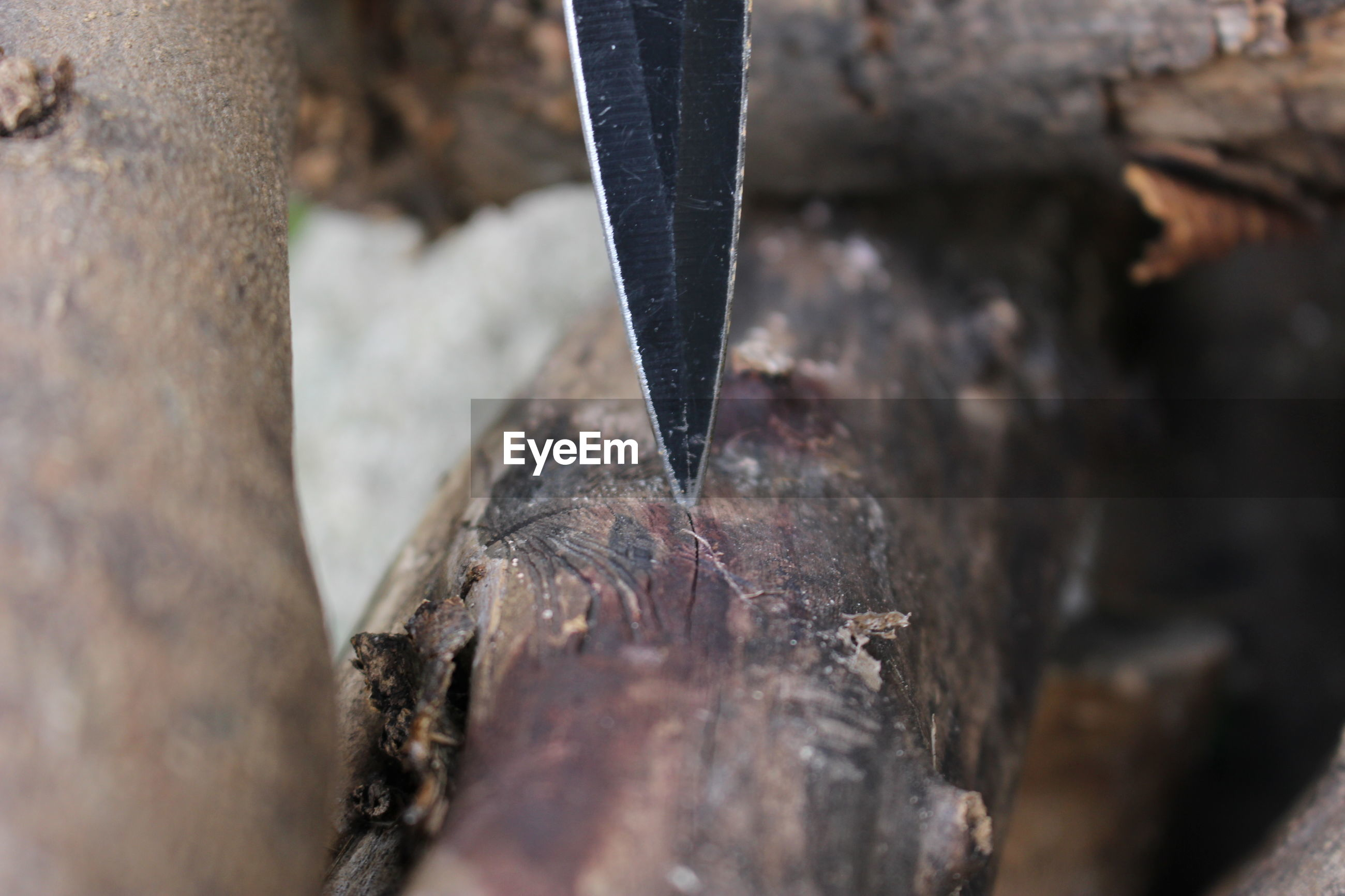 Close-up of knife stuck in wood