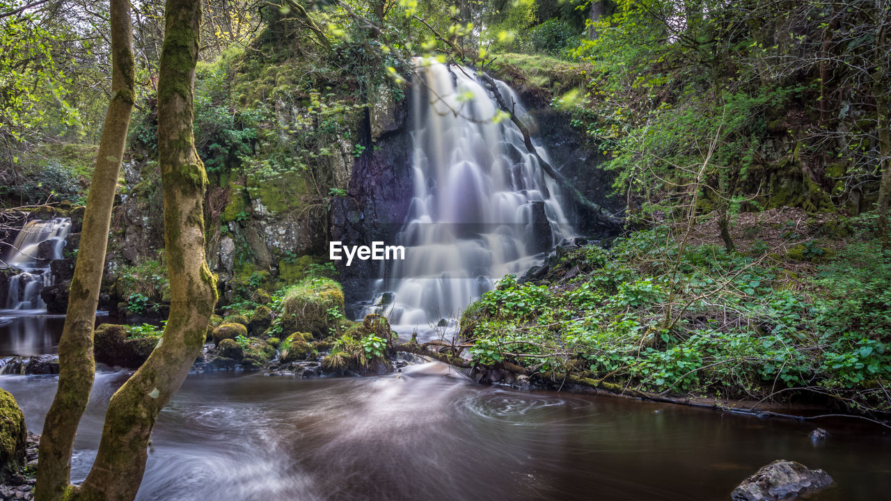 water, tree, long exposure, forest, waterfall, plant, motion, scenics - nature, beauty in nature, blurred motion, flowing water, land, flowing, nature, power in nature, environment, power, rock, growth, rainforest, no people, outdoors, falling water, stream - flowing water