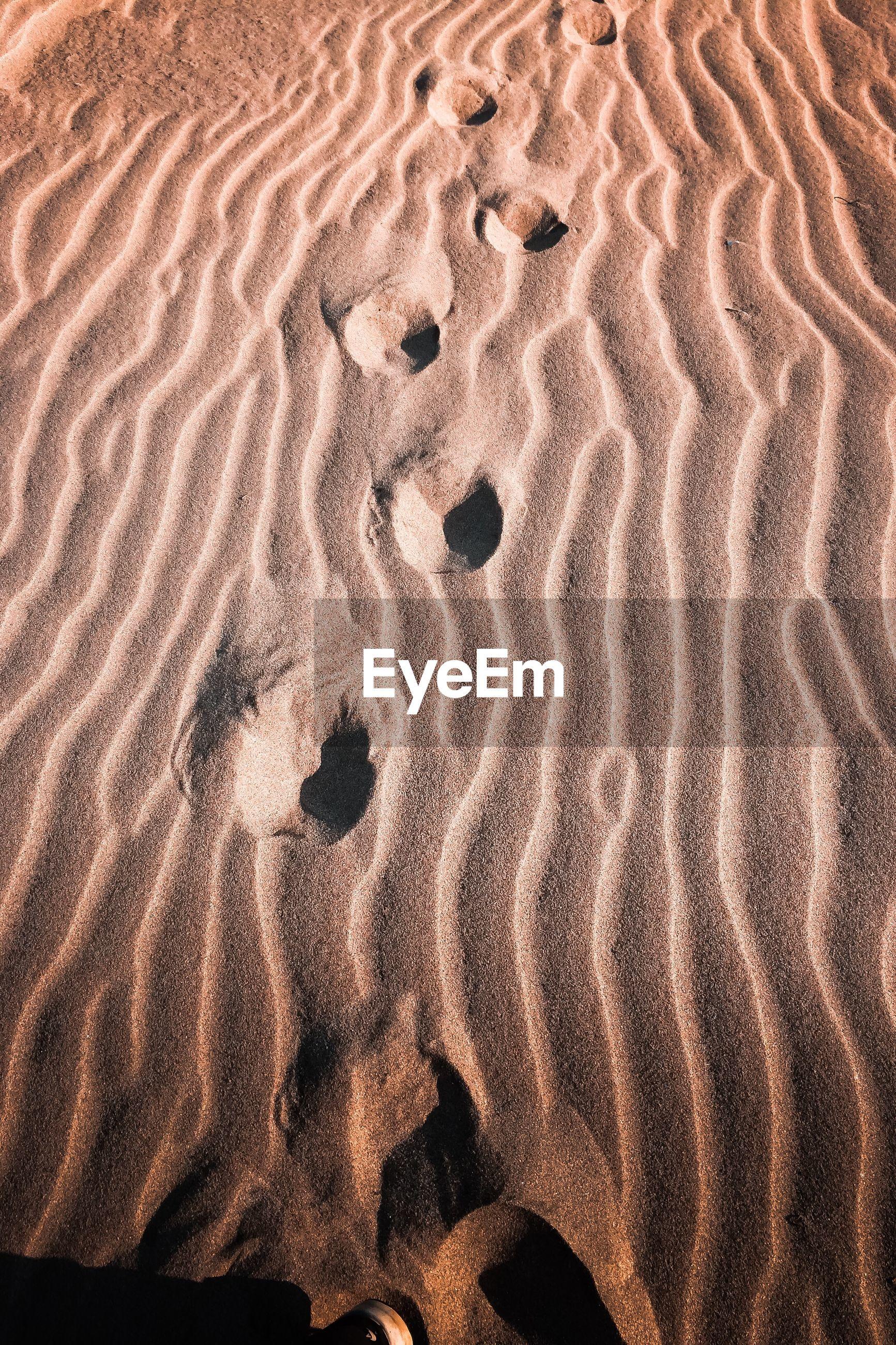 Full frame shot of sand dunes